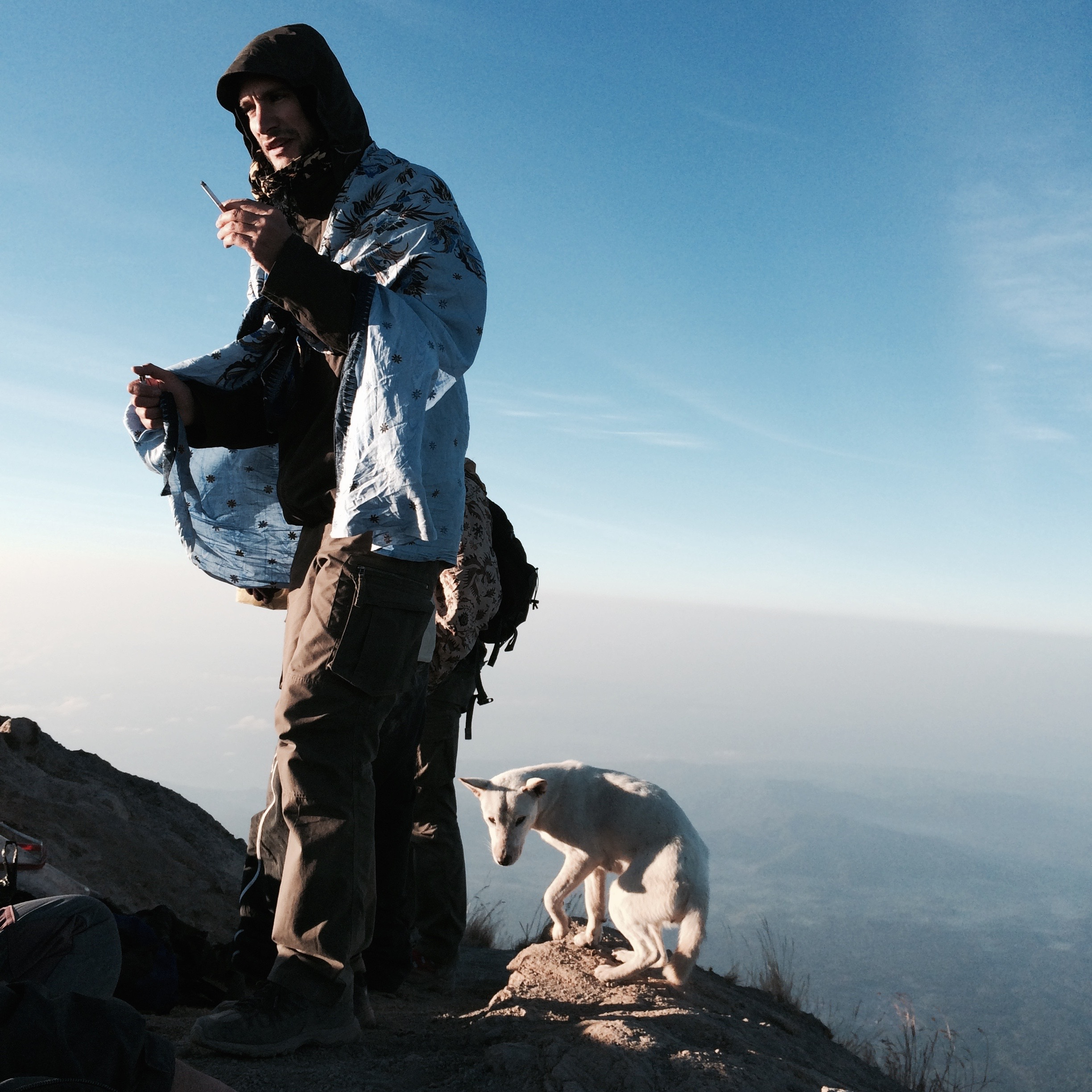 Hiker and white dog on summit