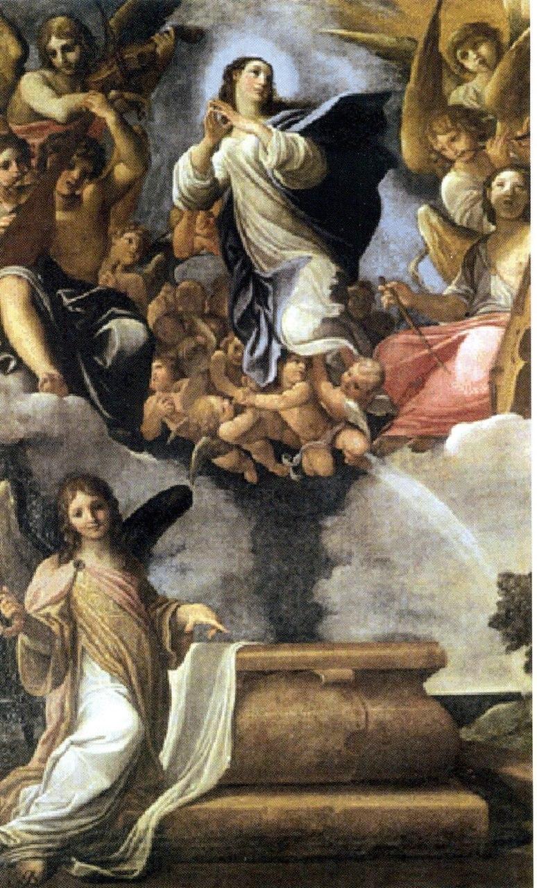 Ludovico Carracci, La Vergine Assunta, Modena Galleria Estense