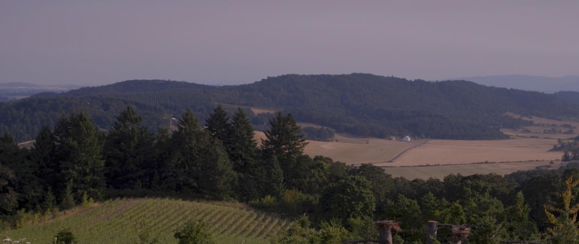 Yungberg Hill, Oregon Wedding Video - NW Creatives-4.jpg