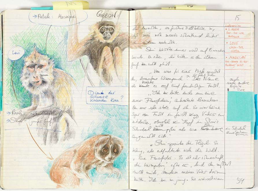 Dragon Rider 2 Notebook_pic8.JPG