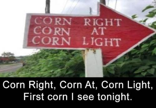 funny4.jpg