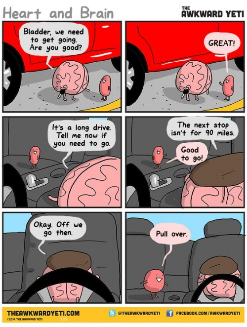 funny2.jpg