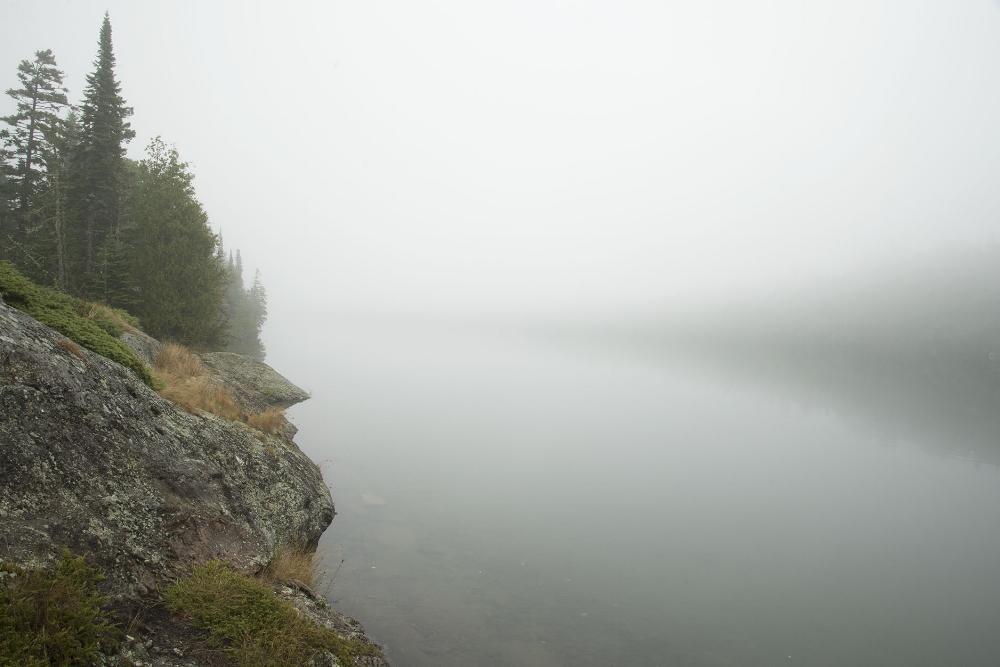 Foggy Cove