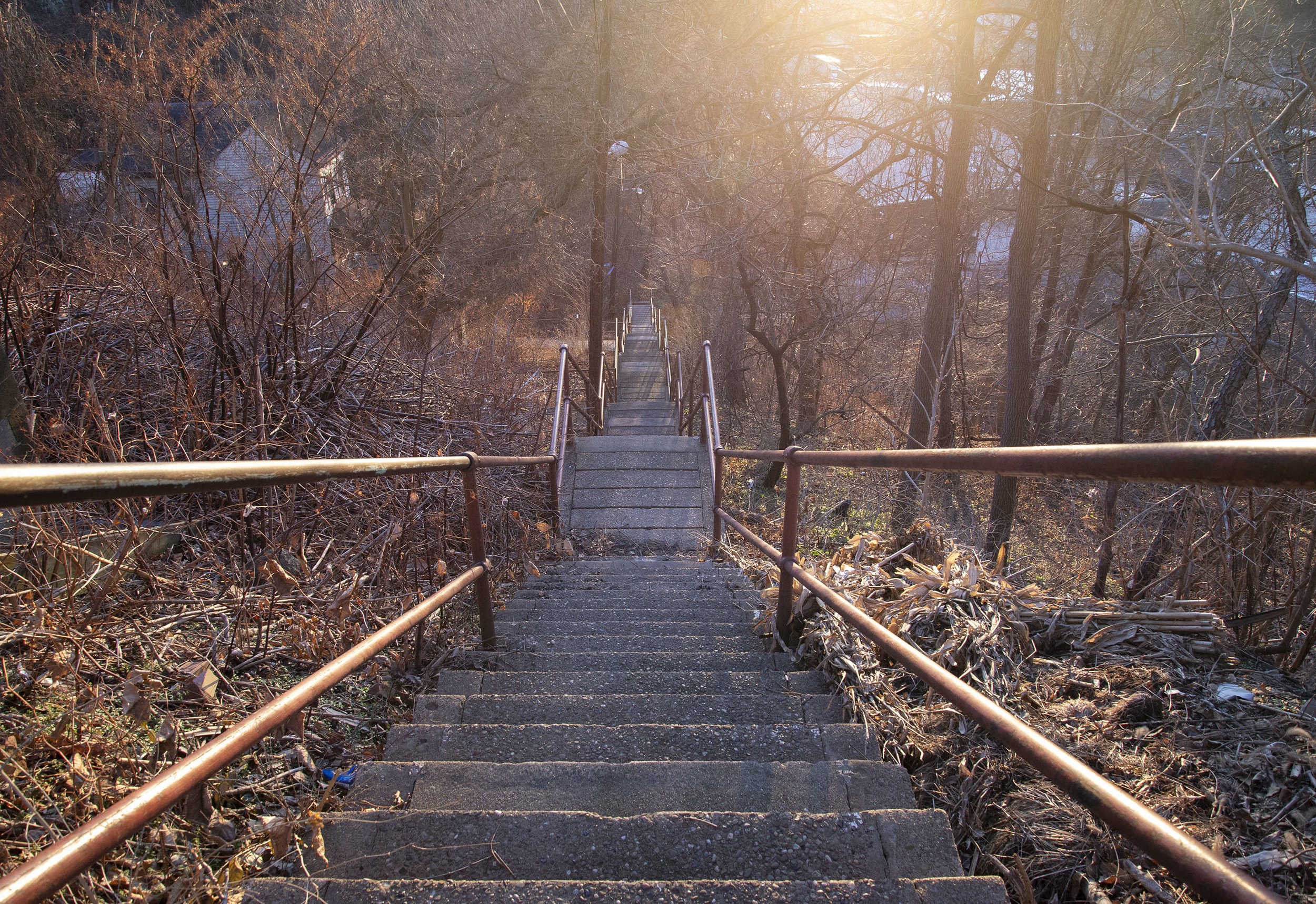 Stairs, Early Winter on the North Side