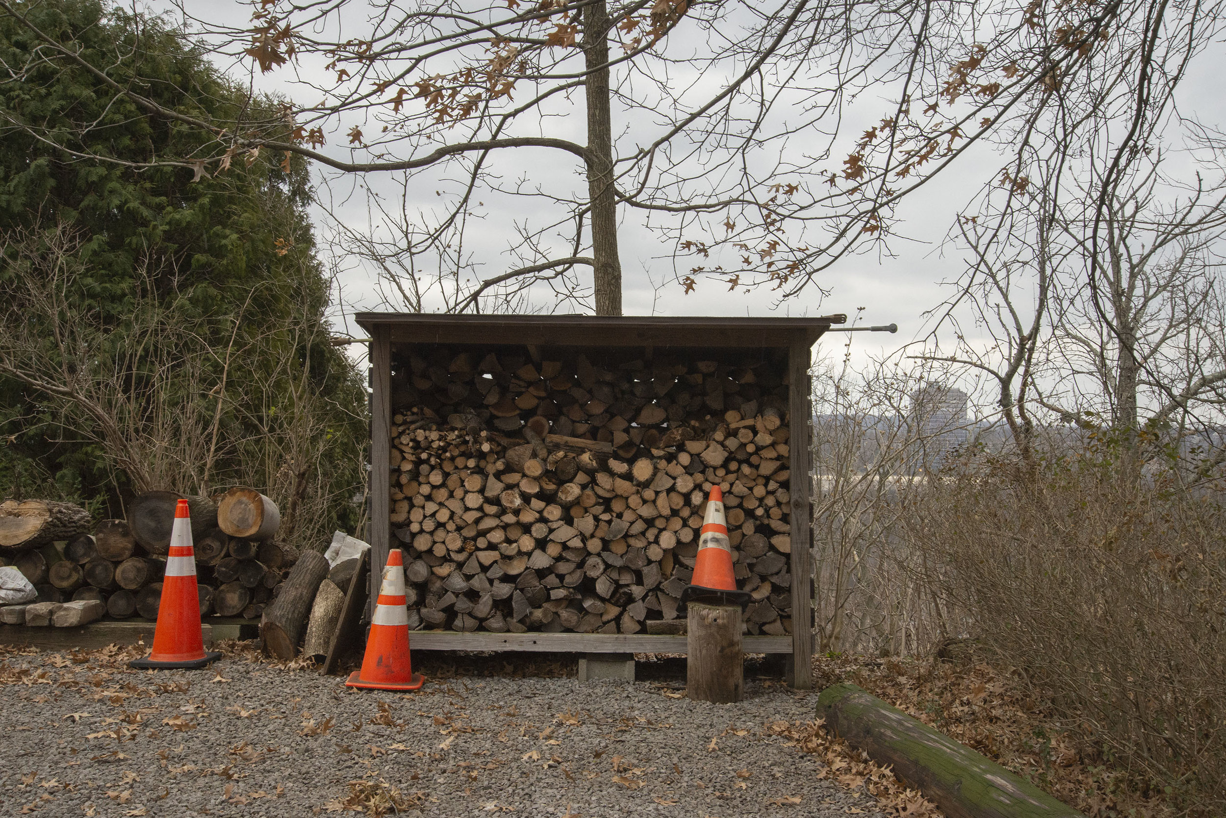 Wood Pile above the Allegheny