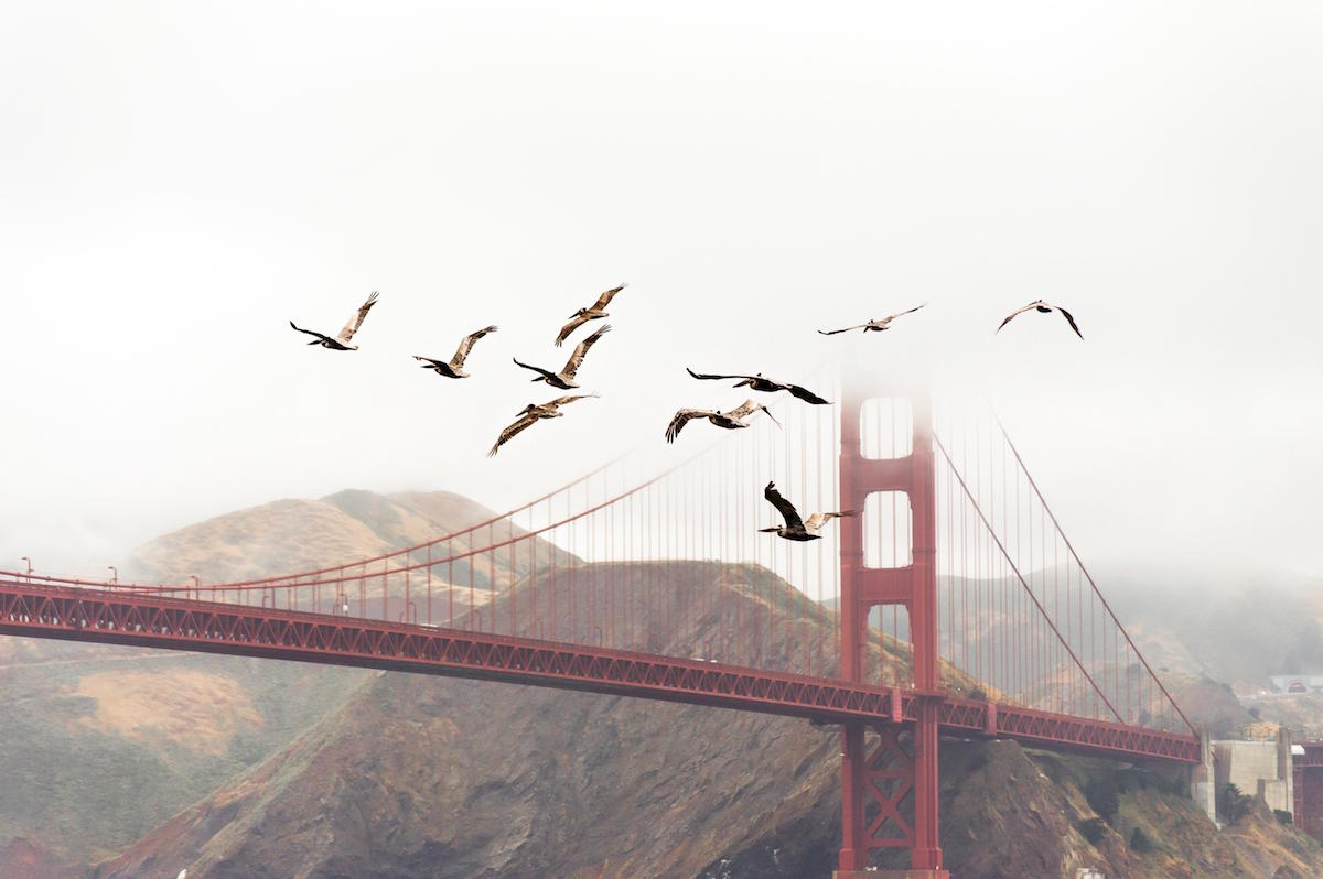 San Francisco for Pay Gap.jpg