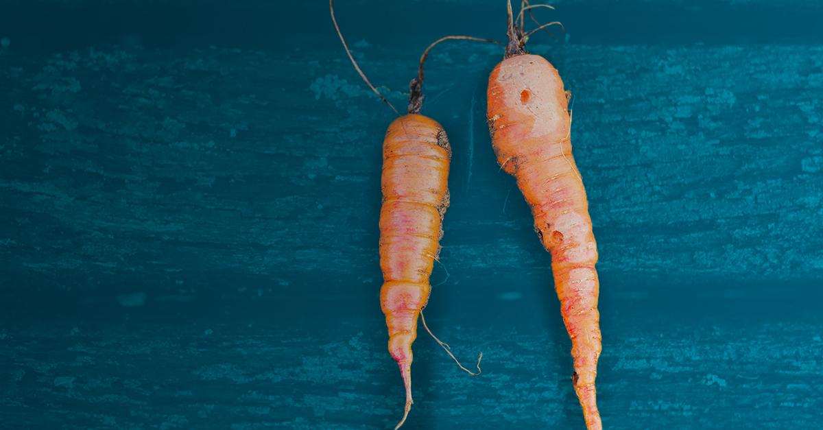 Food Carrots Gradient.jpg