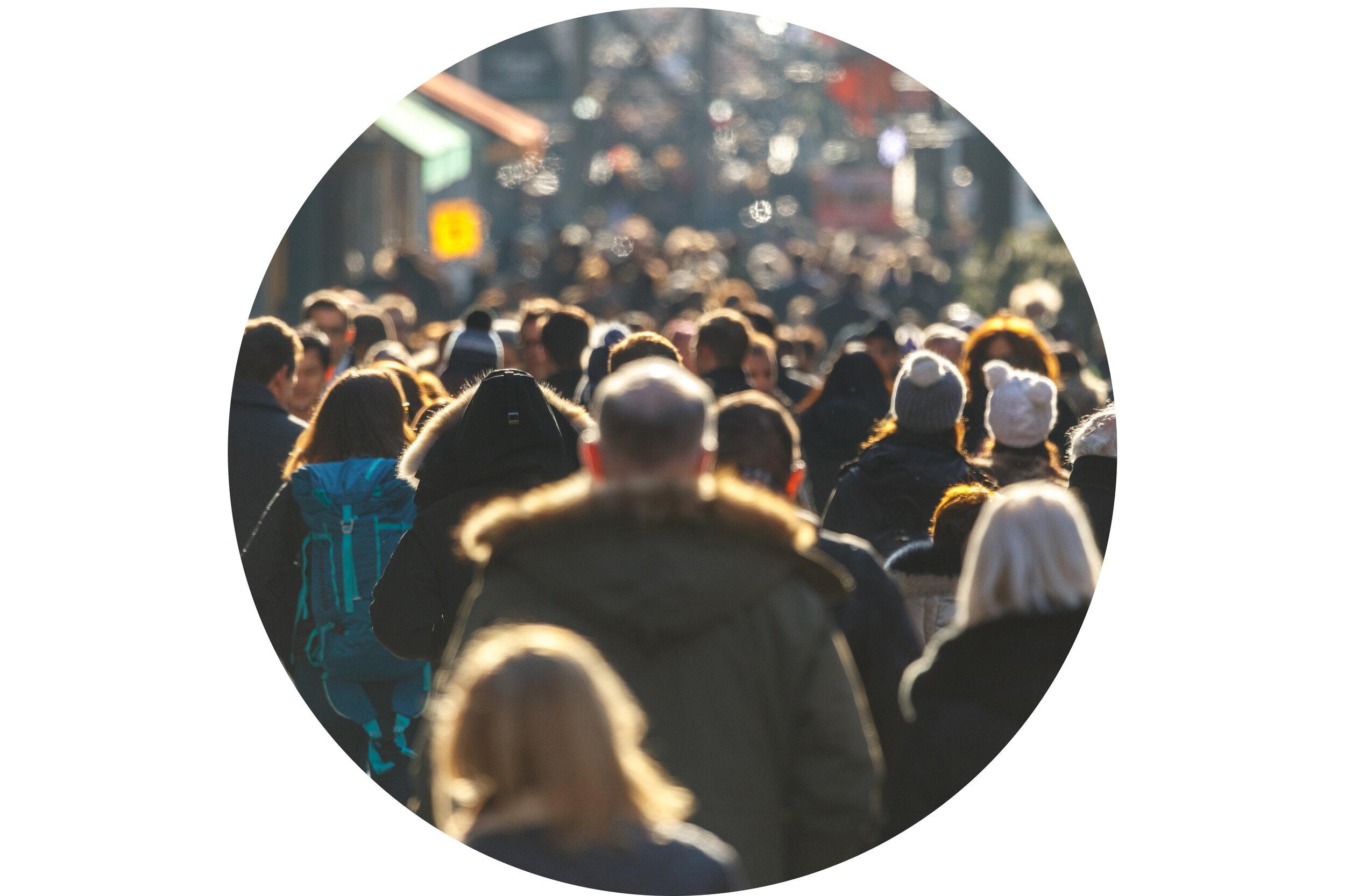 Demographics Circle Crop.jpg
