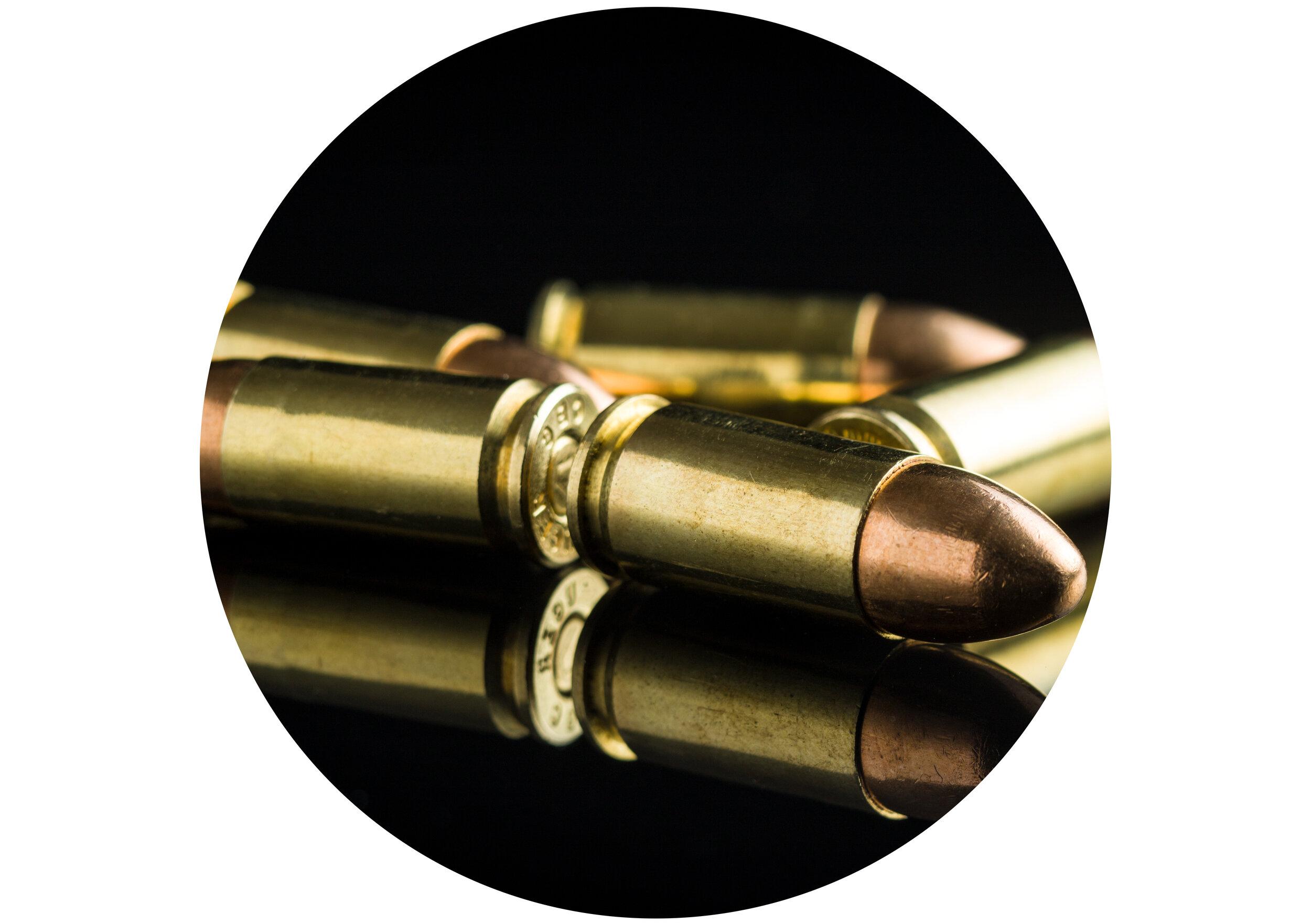 Gun circle crop.jpg