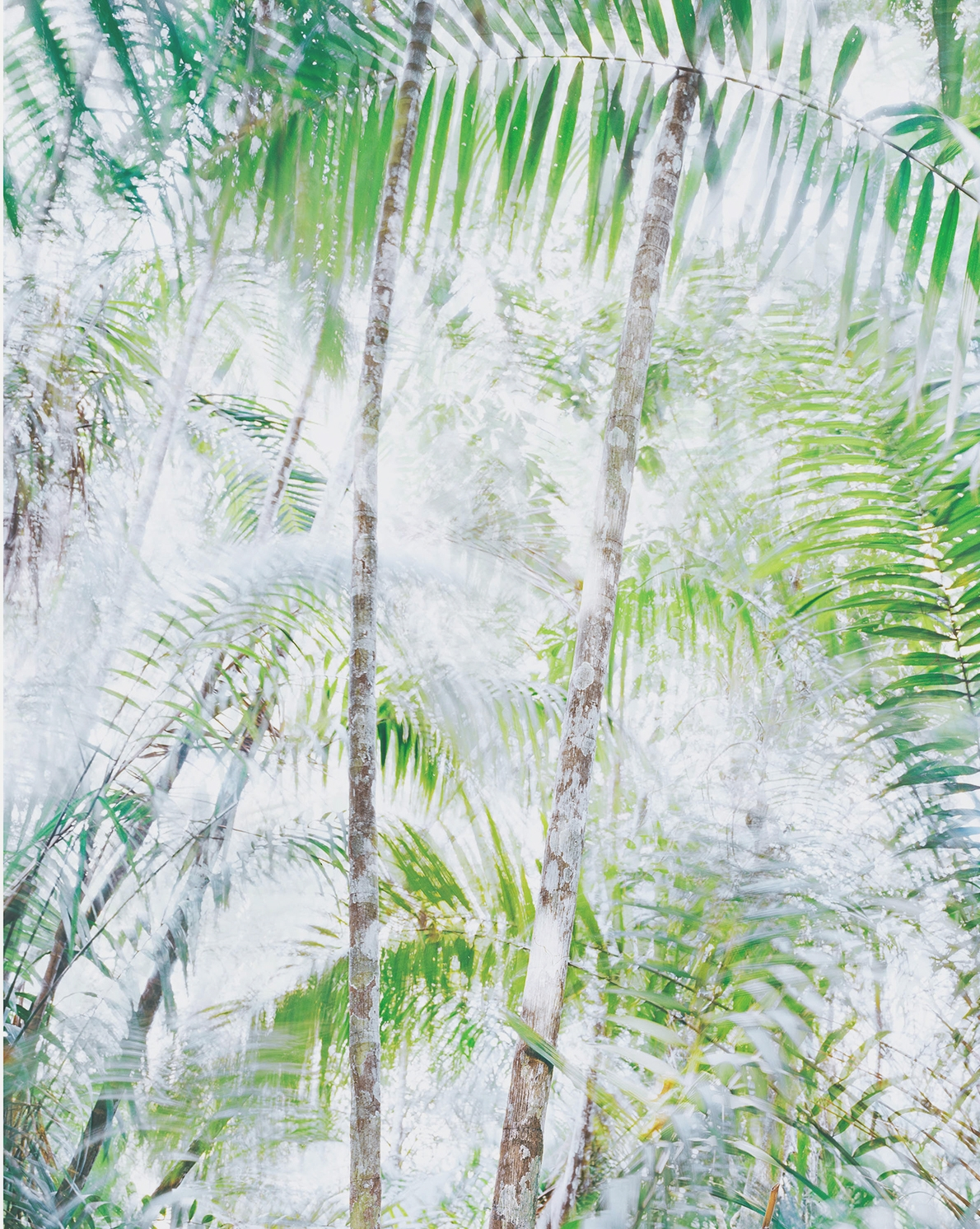 CHRISTINA SEELY  Respiro 28,  2017 Vellum + Archival Inkjet Prints Overlaid  Available sizes: 37.5 x 30 in., Edition of 4 + 2AP 25 x 20 in., Edition of 4 + 2AP