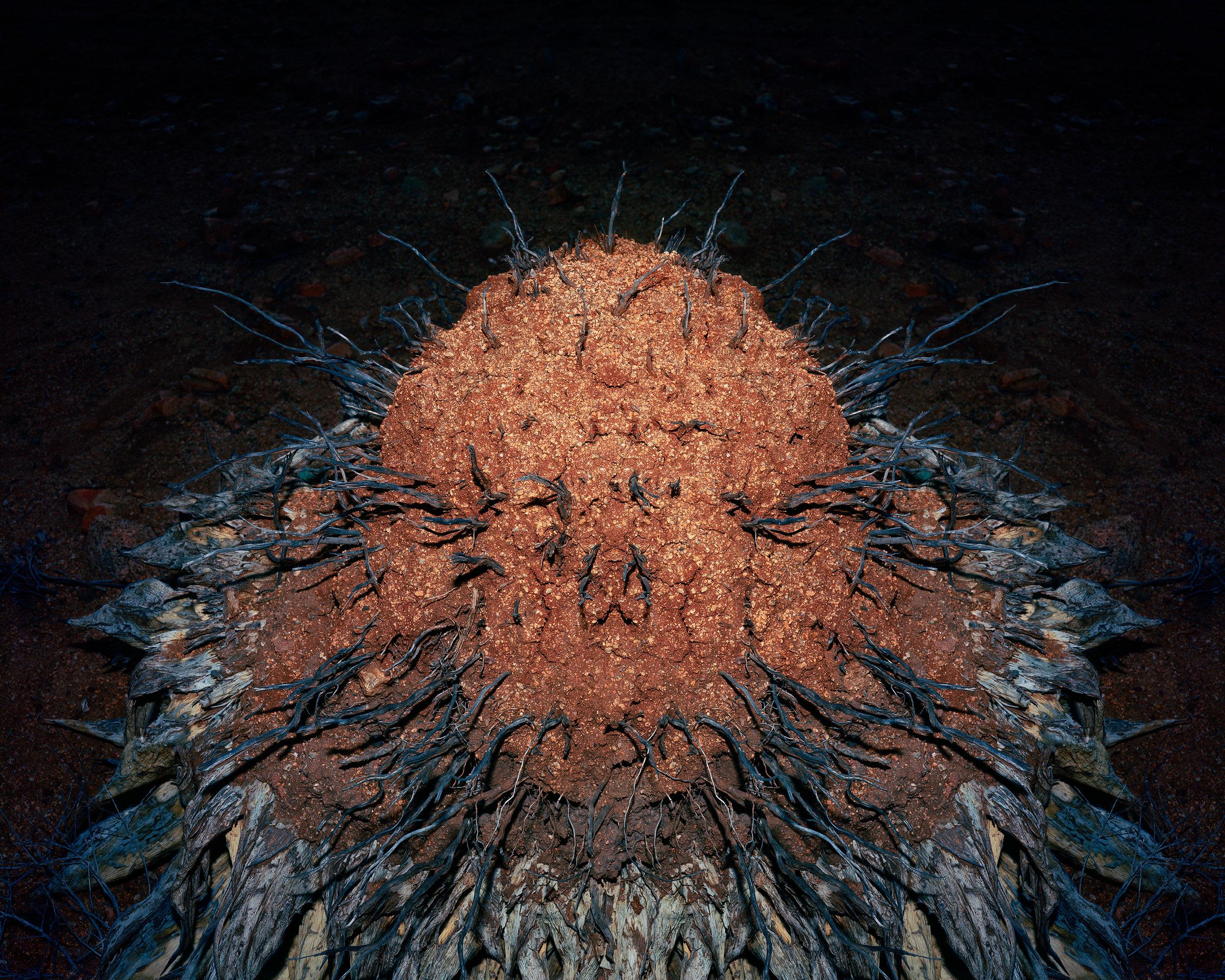MICHAEL LUNDGREN  Nova, 2014  Archival pigment print 32 x 40 in ed. 7 + 1AP