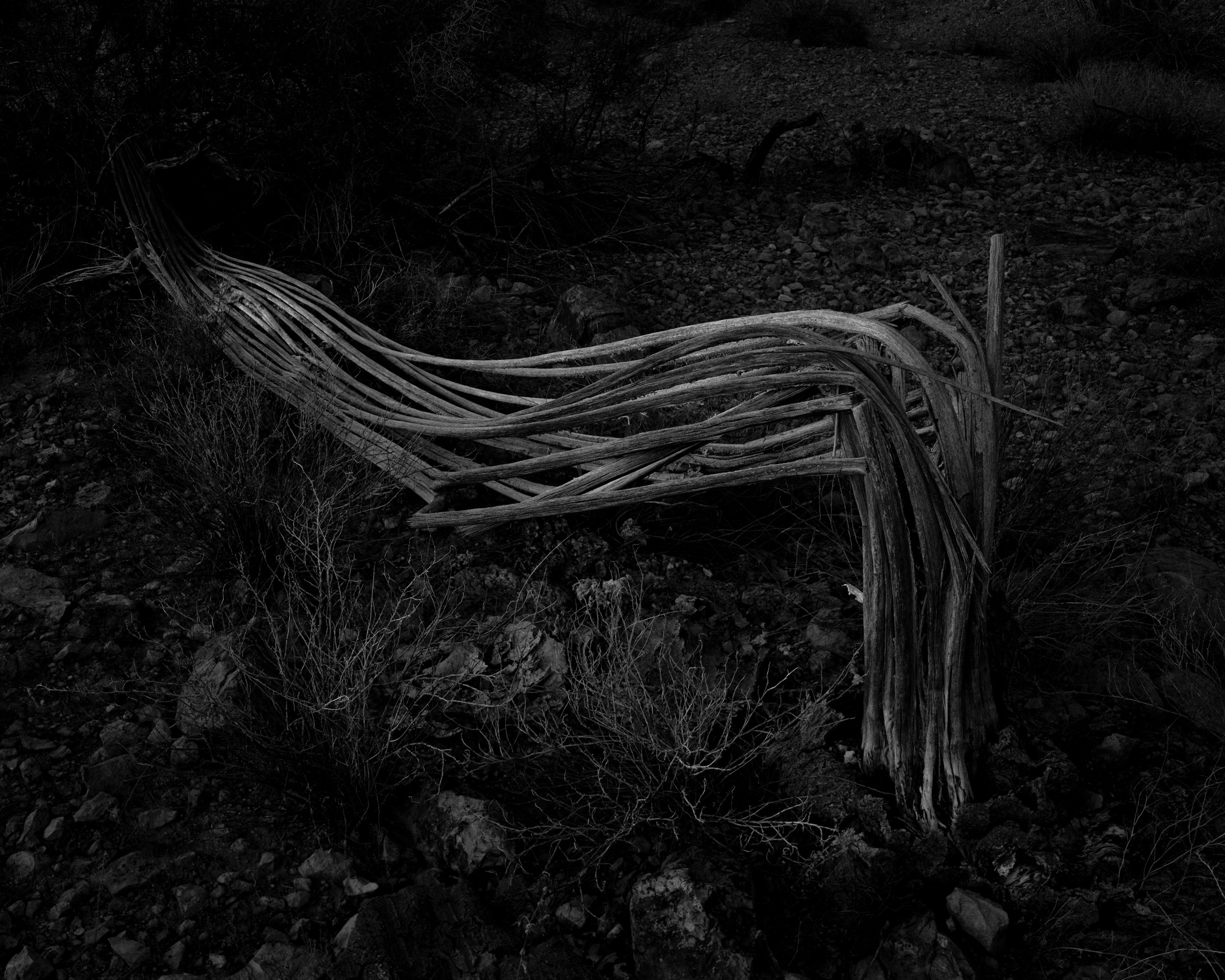 MICHAEL LUNDGREN  Untitled (broken), 2004  Gelatin Silver Print  Available sizes 20 x 24 in, ed. 10 + 2AP 32 x 40 in, ed. 3 + 1AP