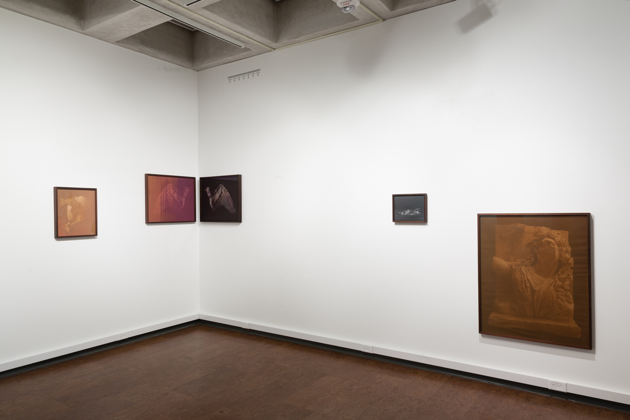 Installation of  Objects & Apparitions  at Handwerker Gallery, Ithaca College, Ithaca, NY