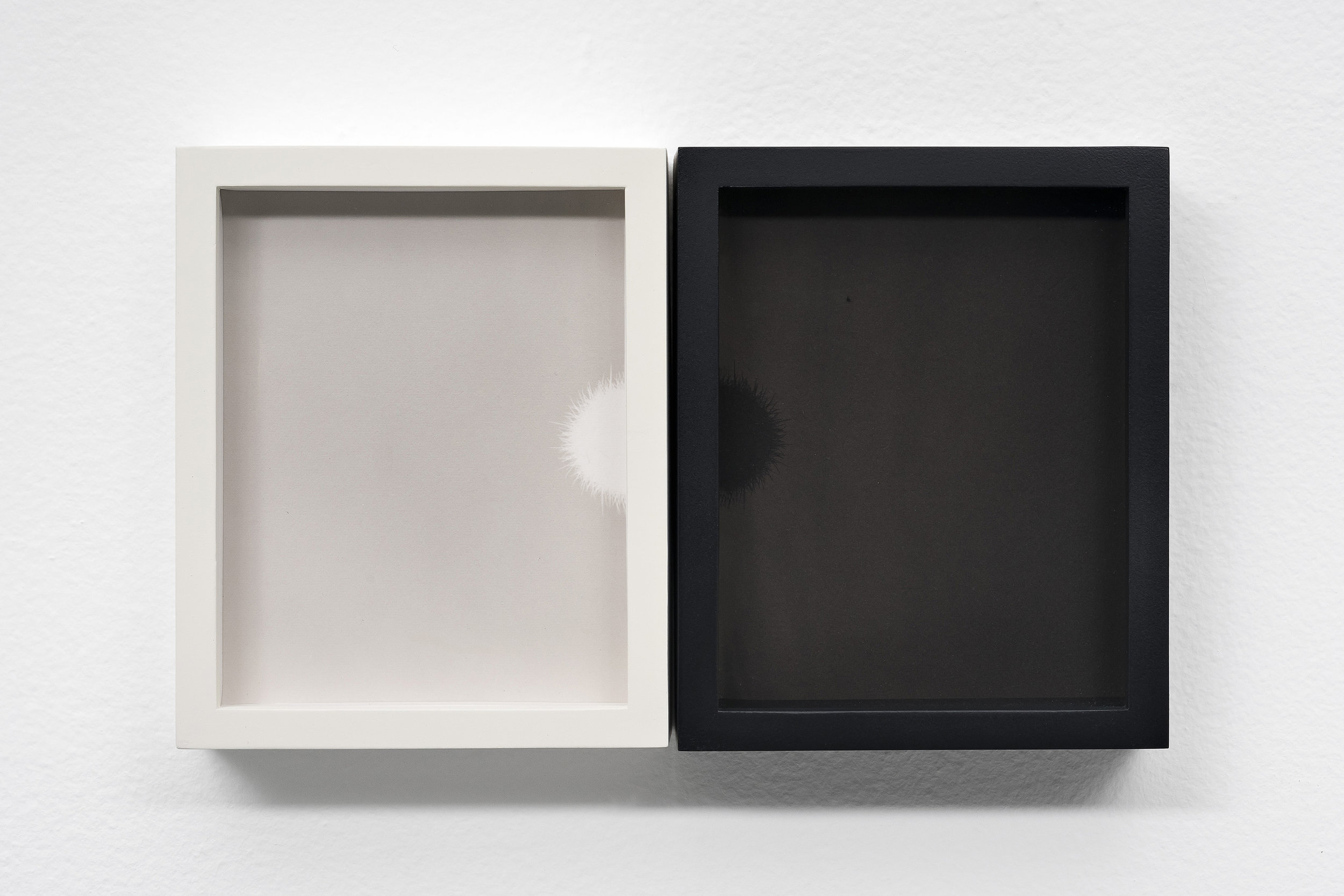 SCOTT B. DAVIS Sphere 1 (Sonoran Desert), 2018 Unique paper negative palladium / platinum prints, diptych 5 x 8 inches