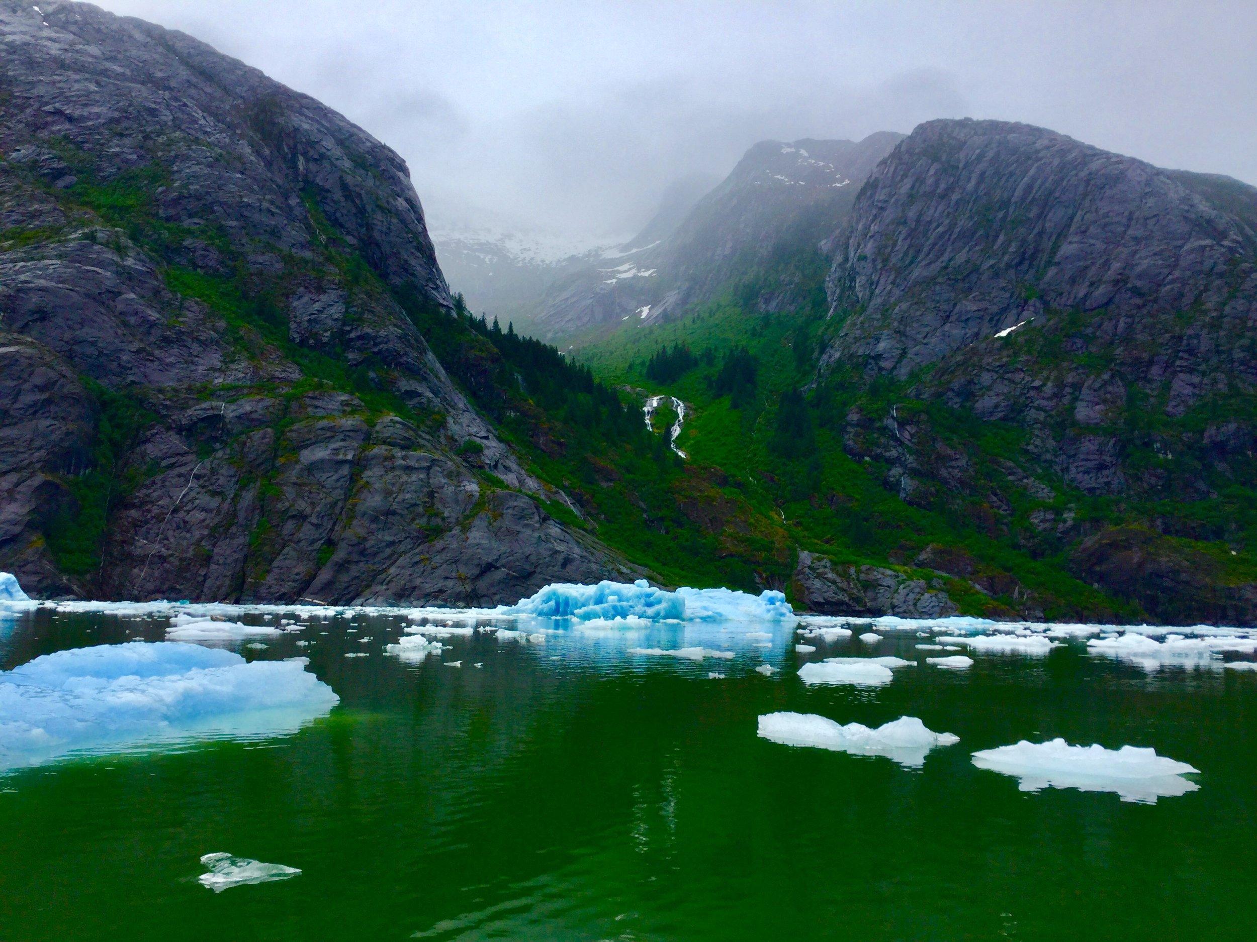 Ice field.jpg