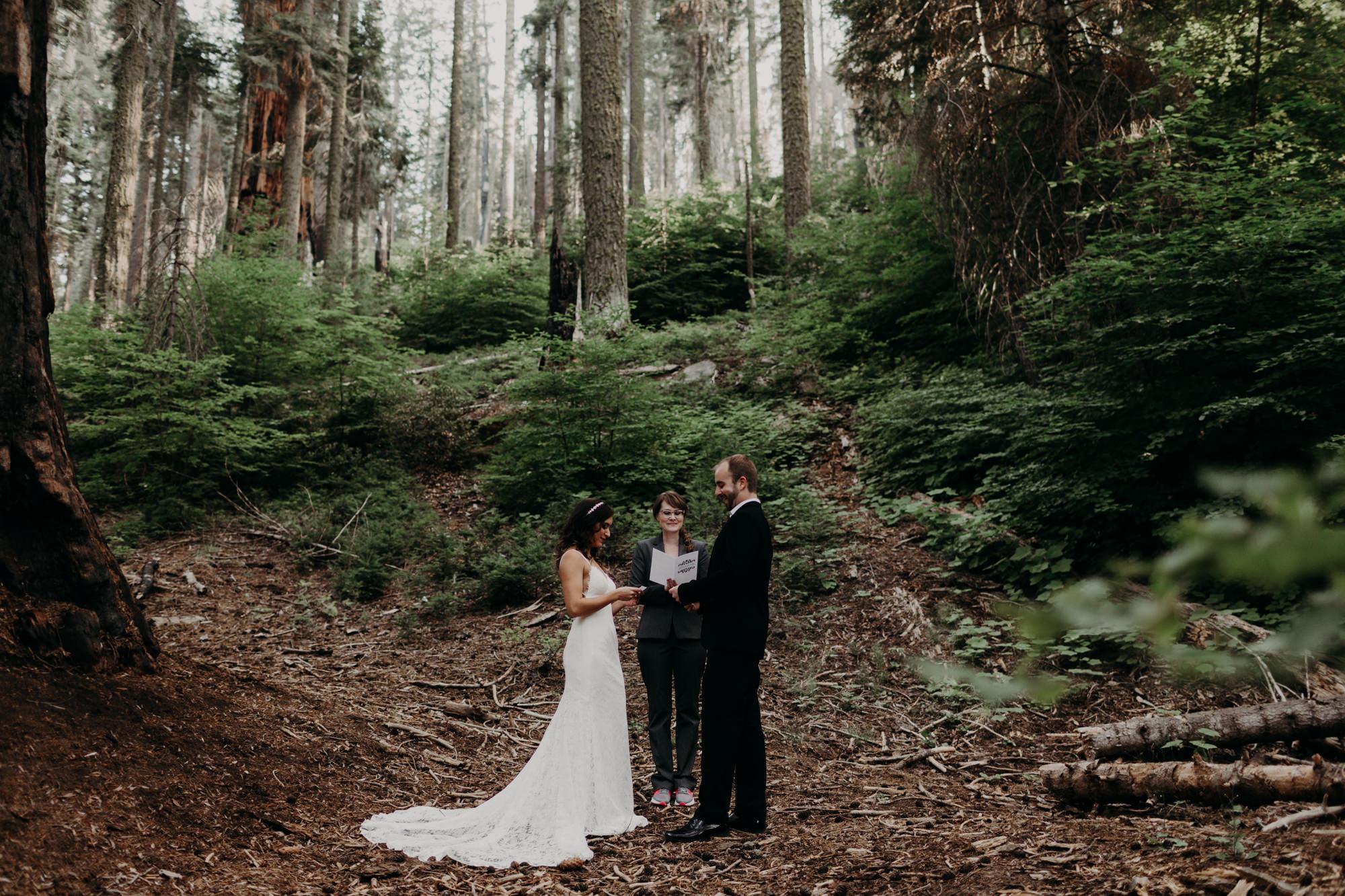 sequoia national park elopement-3.jpg