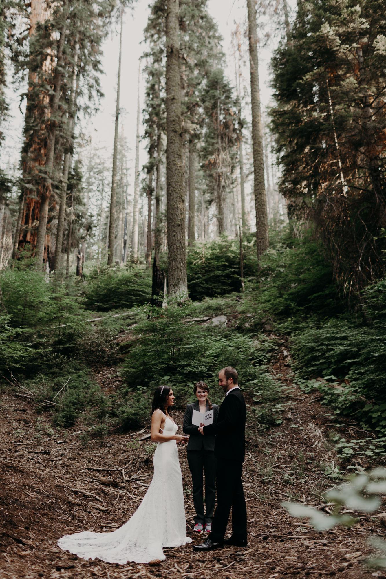 sequoia national park elopement-4.jpg