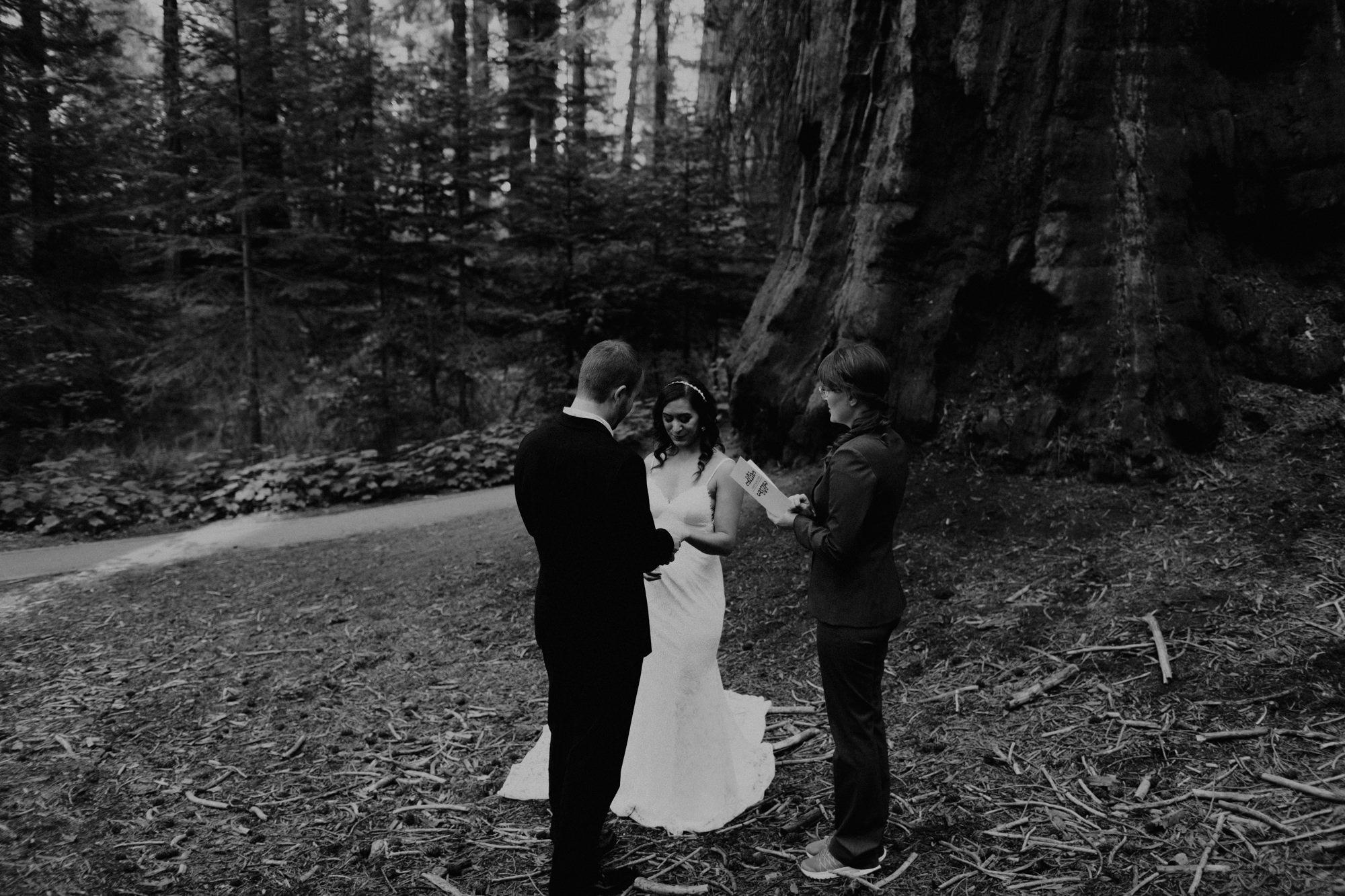 sequoia national park elopement-6.jpg
