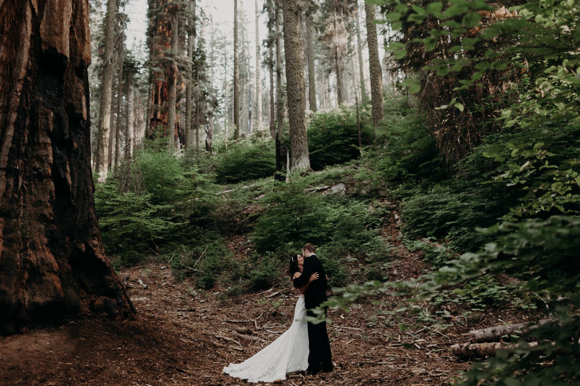sequoia national park elopement-8.jpg