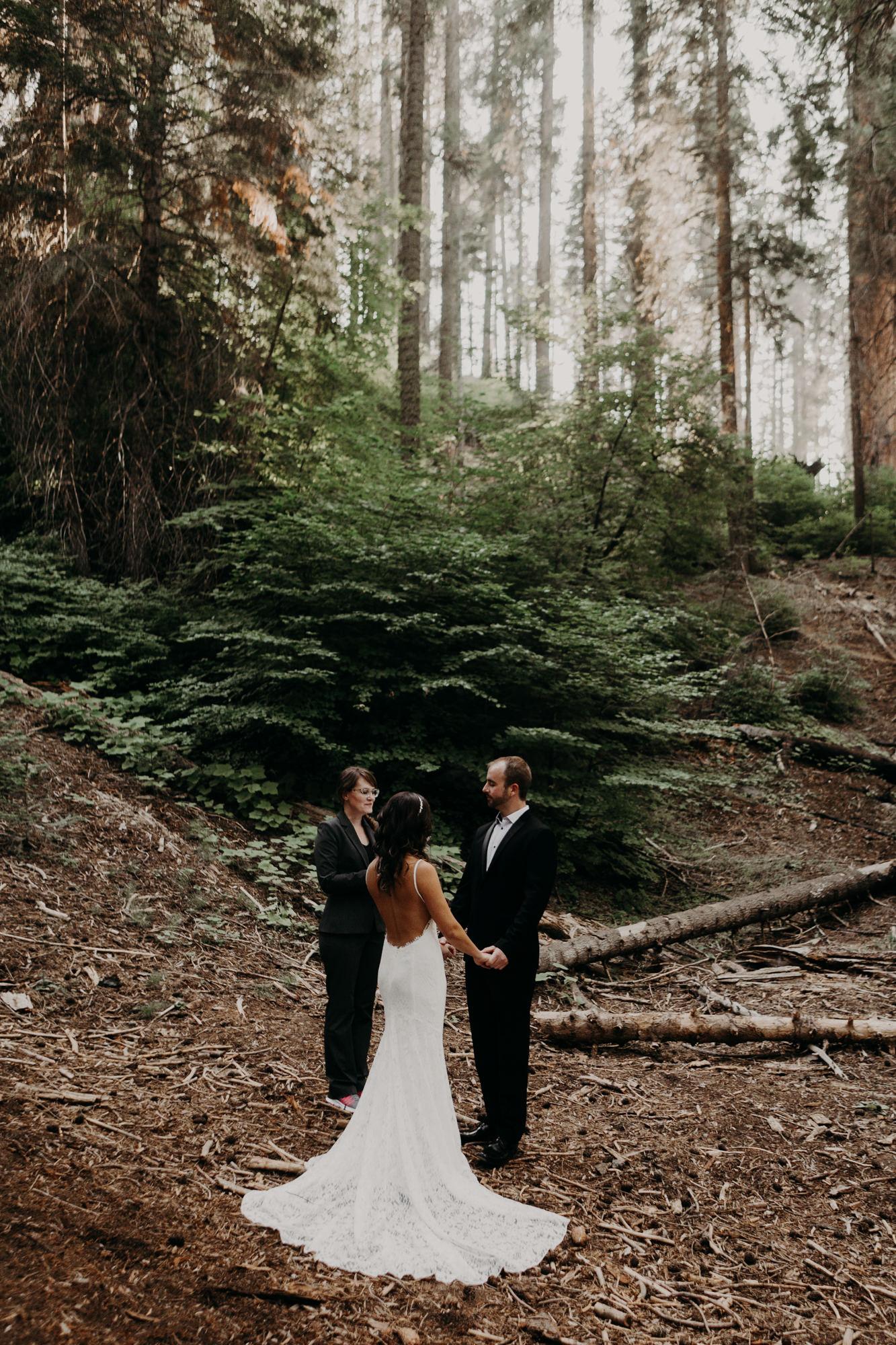sequoia national park elopement-10.jpg