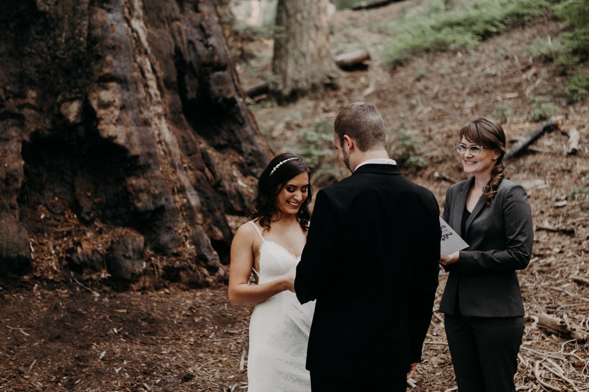sequoia national park elopement-11.jpg