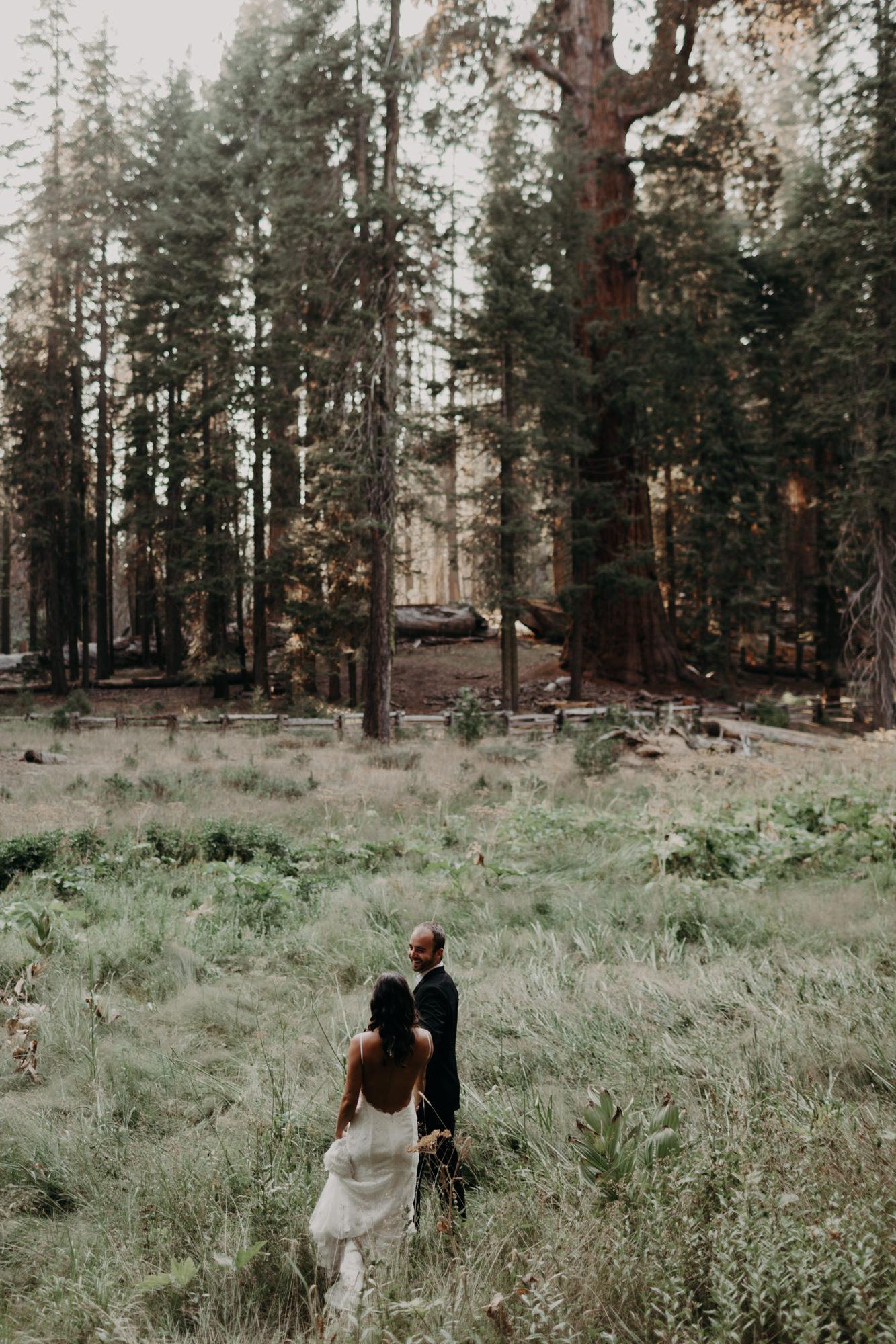 sequoia national park elopement-18.jpg