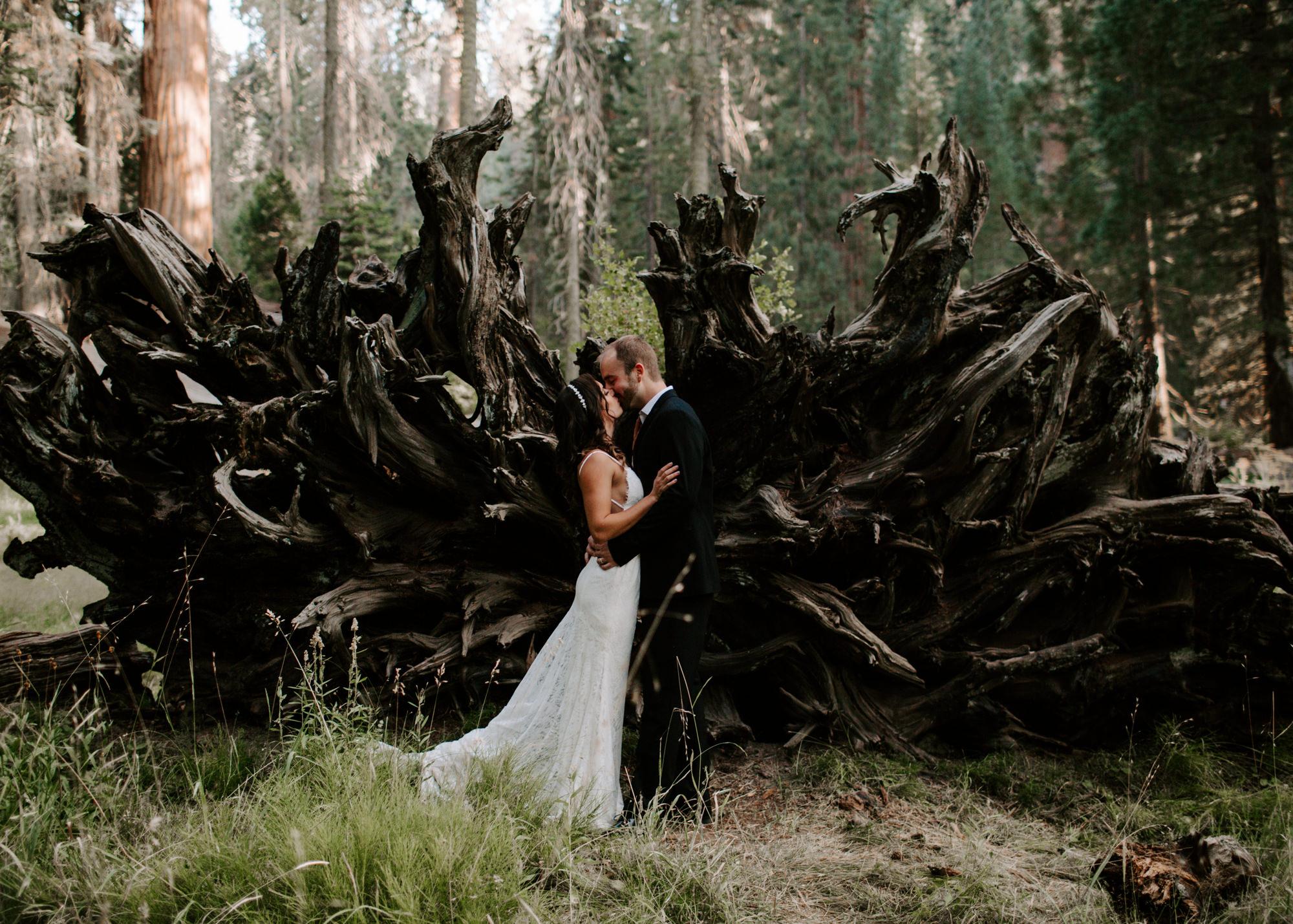 sequoia national park elopement-26.jpg