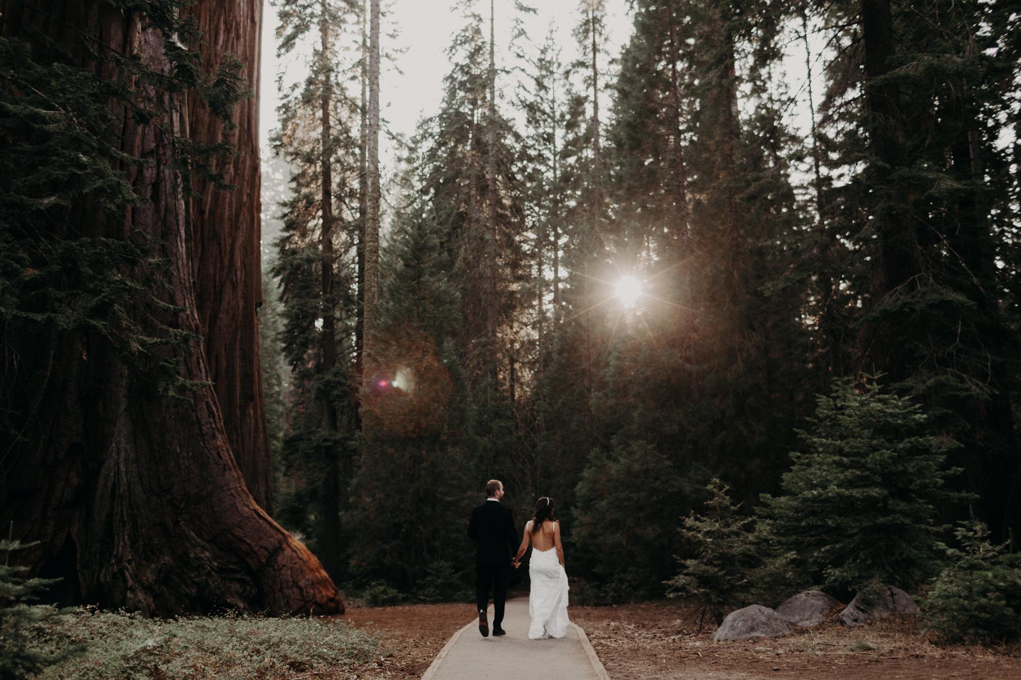 sequoia national park elopement-28.jpg