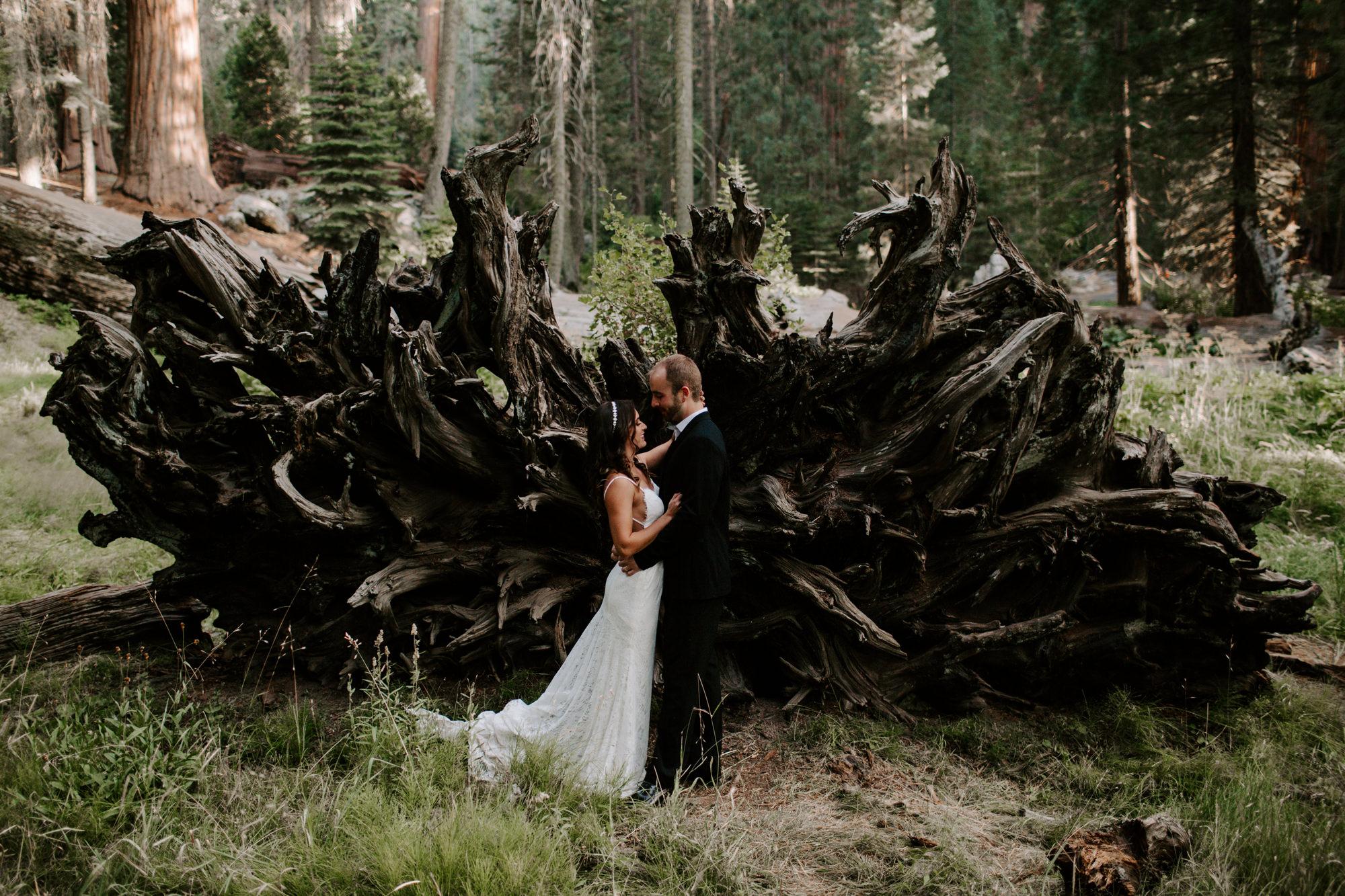 sequoia national park elopement-27.jpg