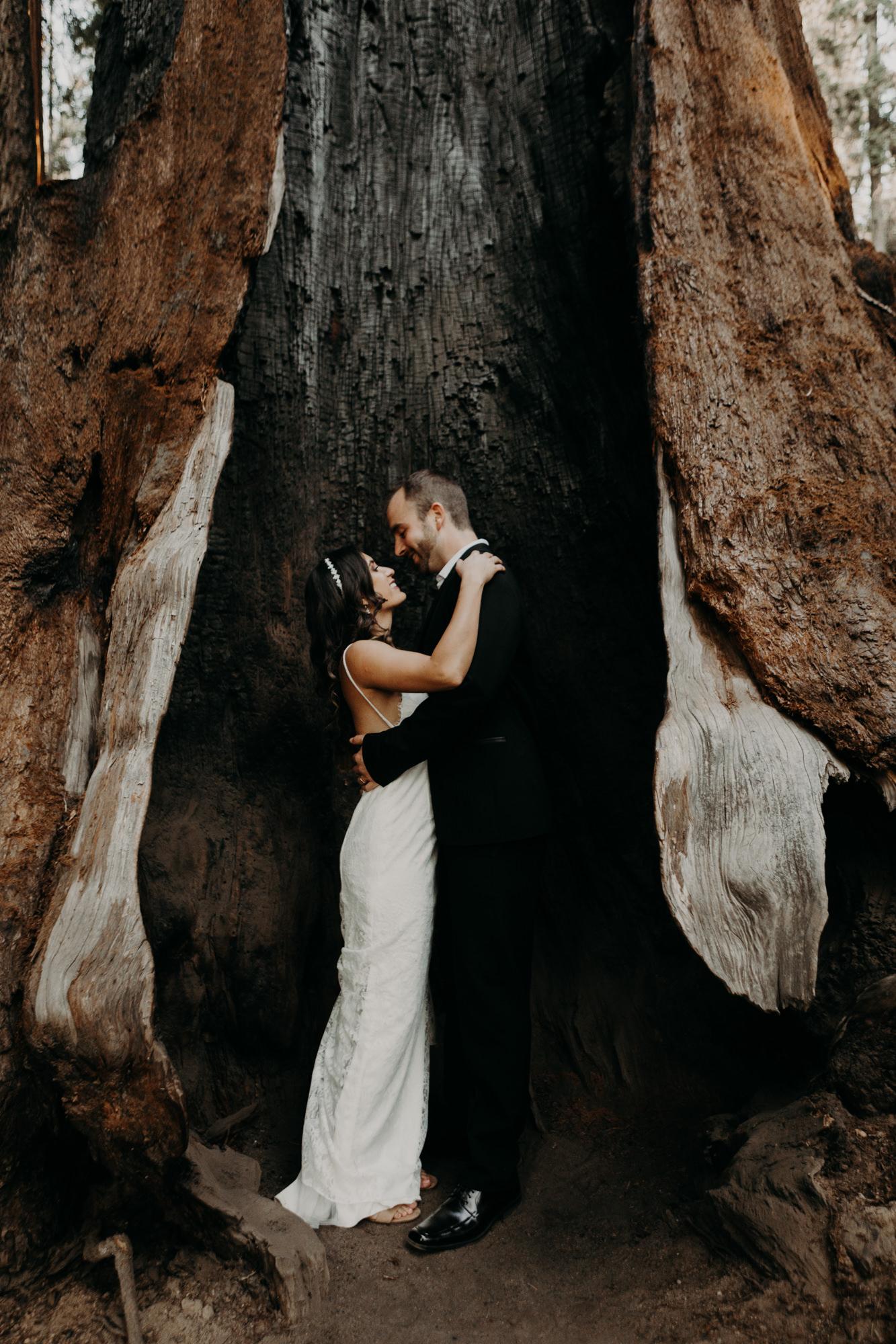 sequoia national park elopement-31.jpg