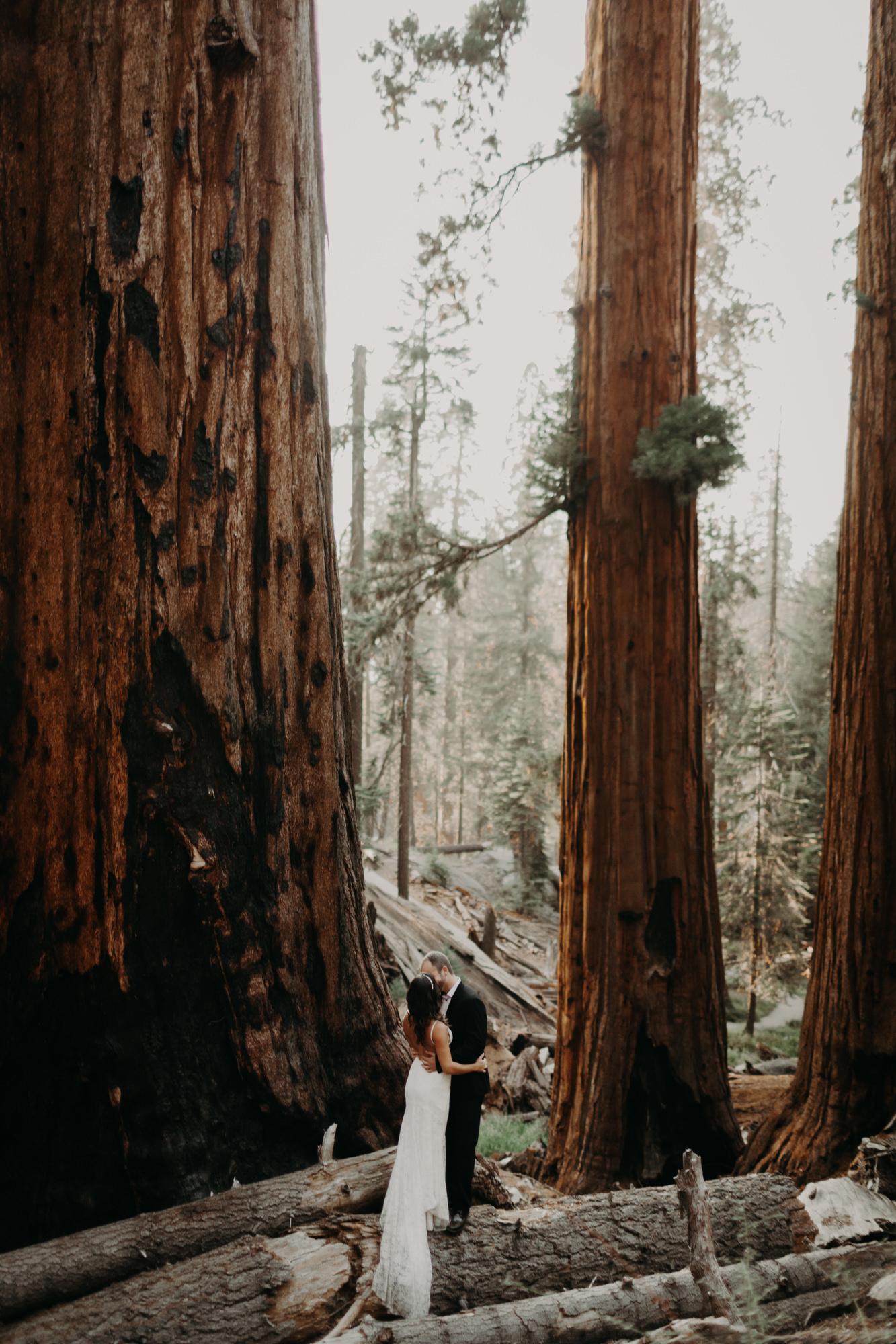 sequoia national park elopement-35.jpg