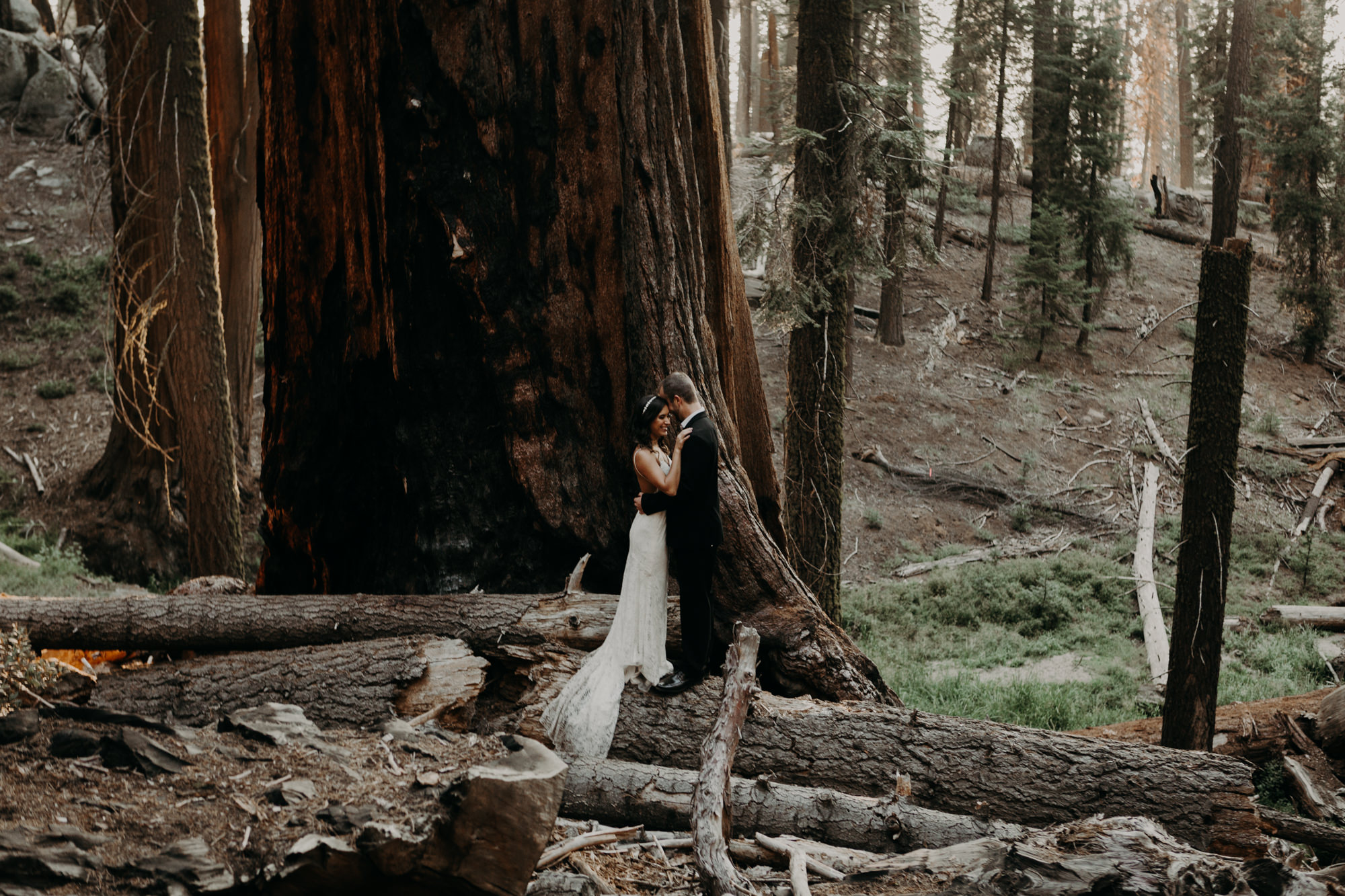 sequoia national park elopement-46.jpg