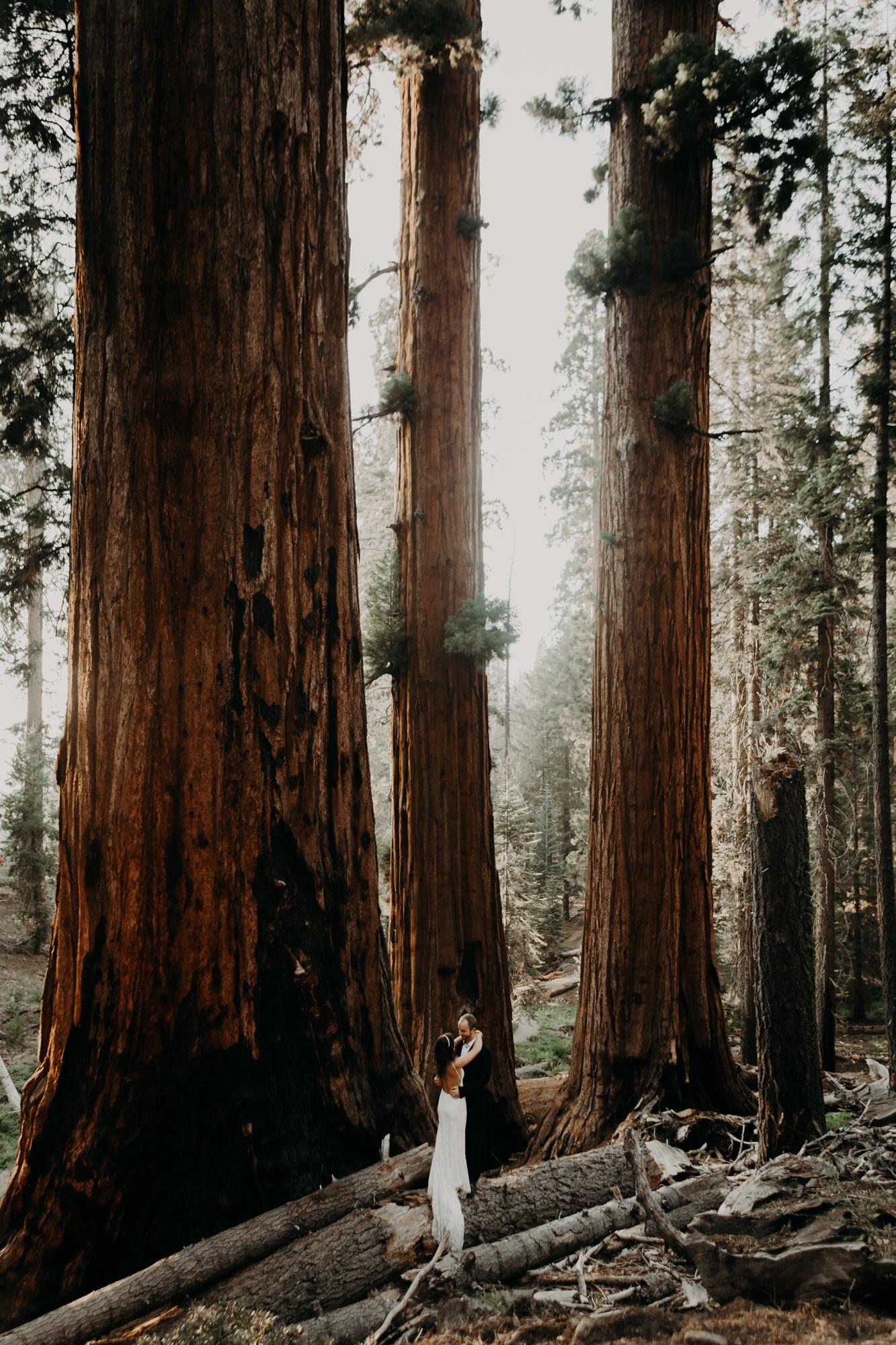 sequoia national park elopement-48.jpg