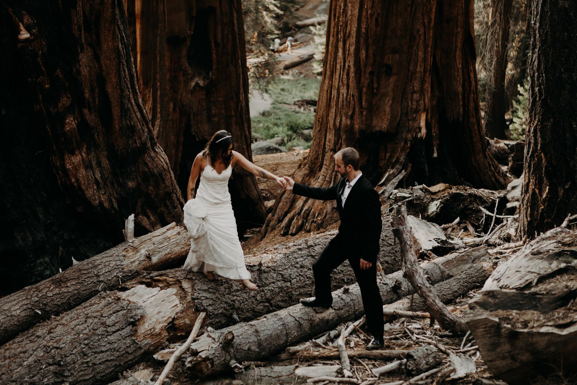 sequoia national park elopement-49.jpg