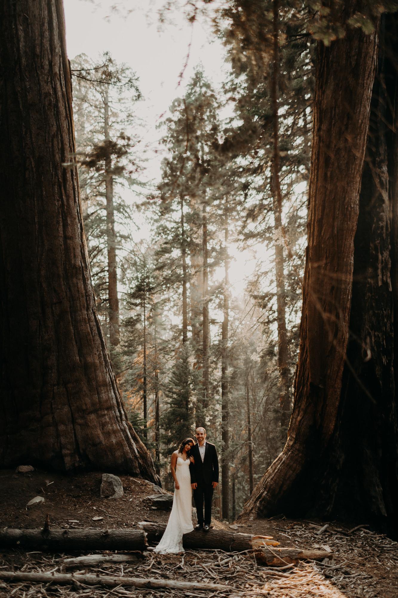 sequoia national park elopement-51.jpg