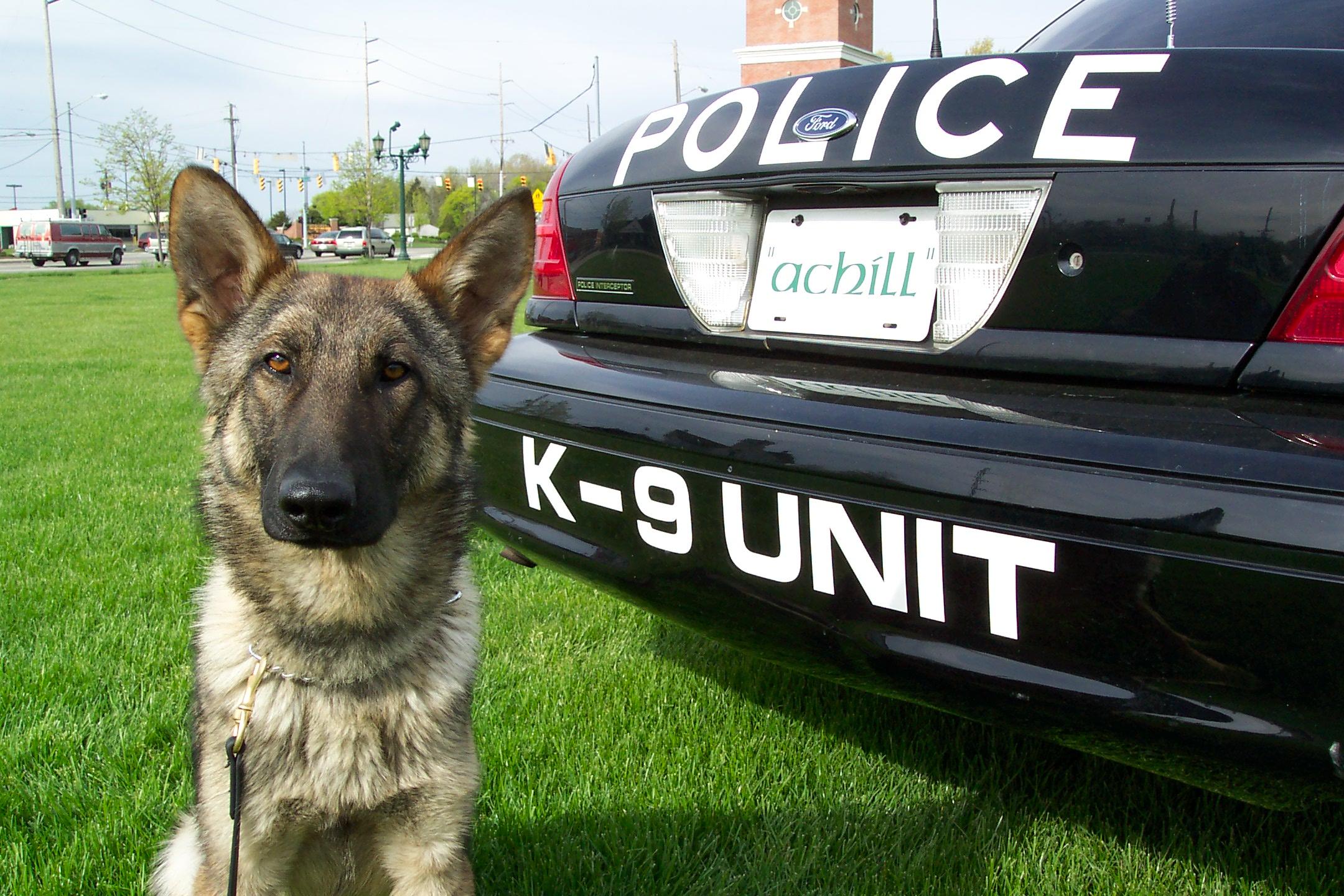 Photo: strongsville.com