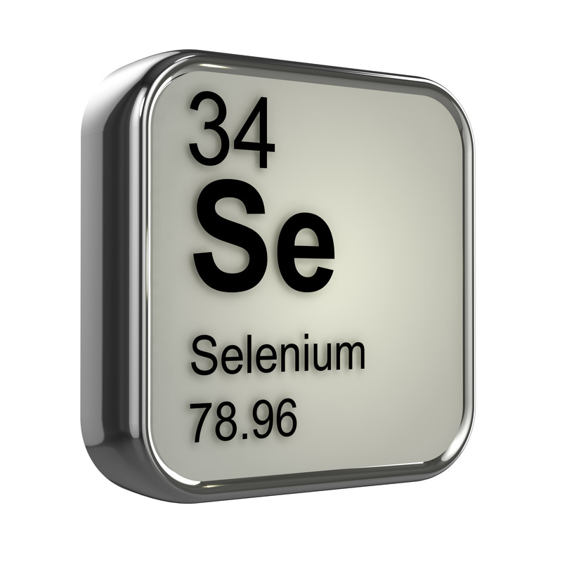 SELENIUM - The Captain of the Body's Fire-Dept.