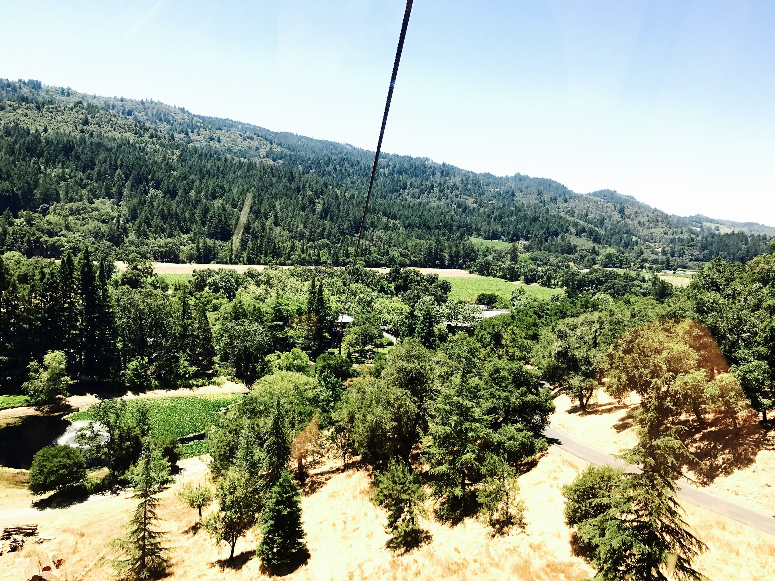 It's a good thing my dad wasn't with us on the gondola, he probably would have freaked out!