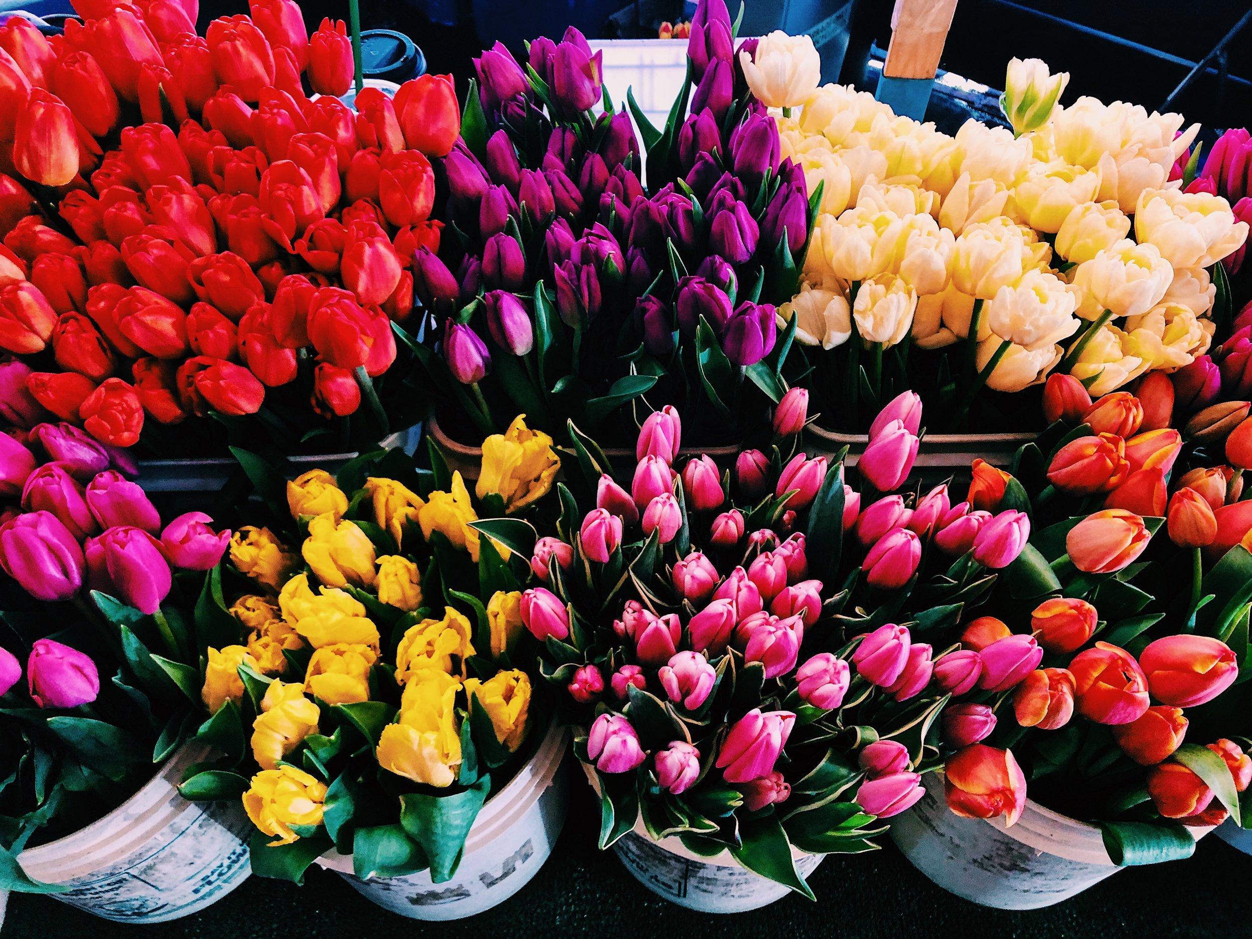 Pike Place tulips.jpg