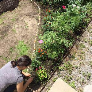 Garden installation by Danielle Serigano