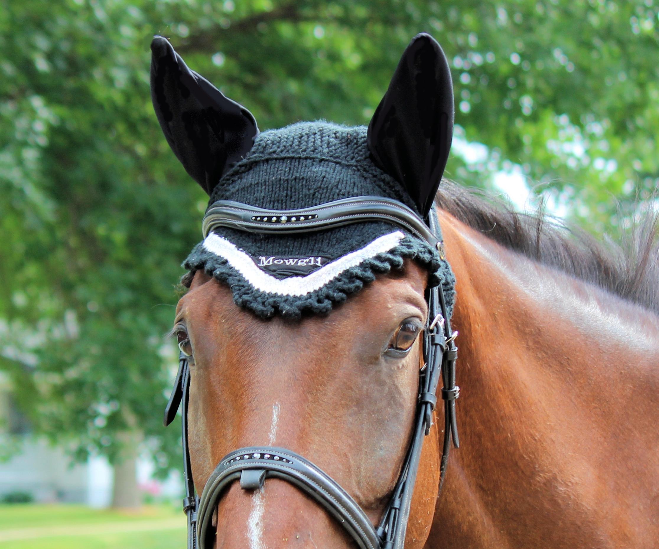 ear-bonnet5.jpg