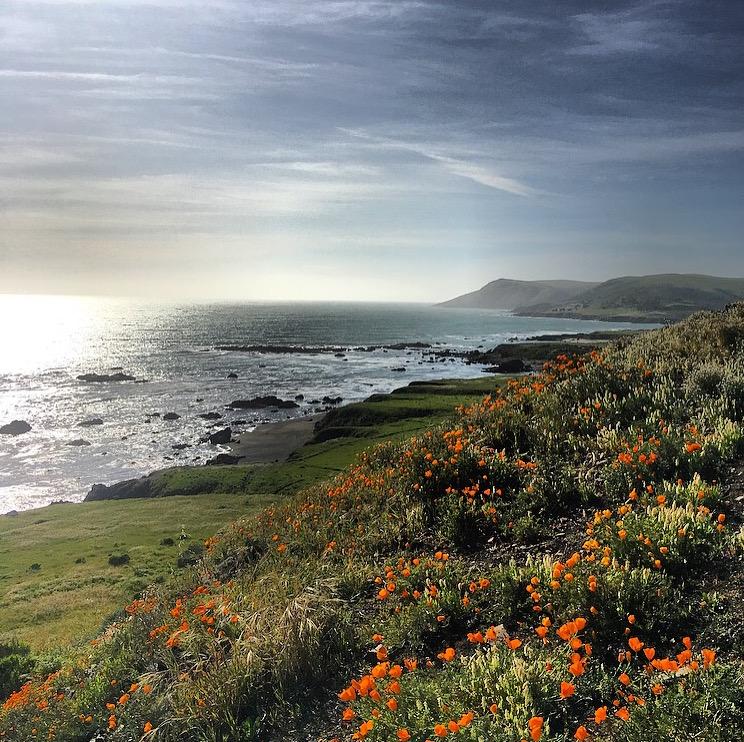 CA coast.JPG