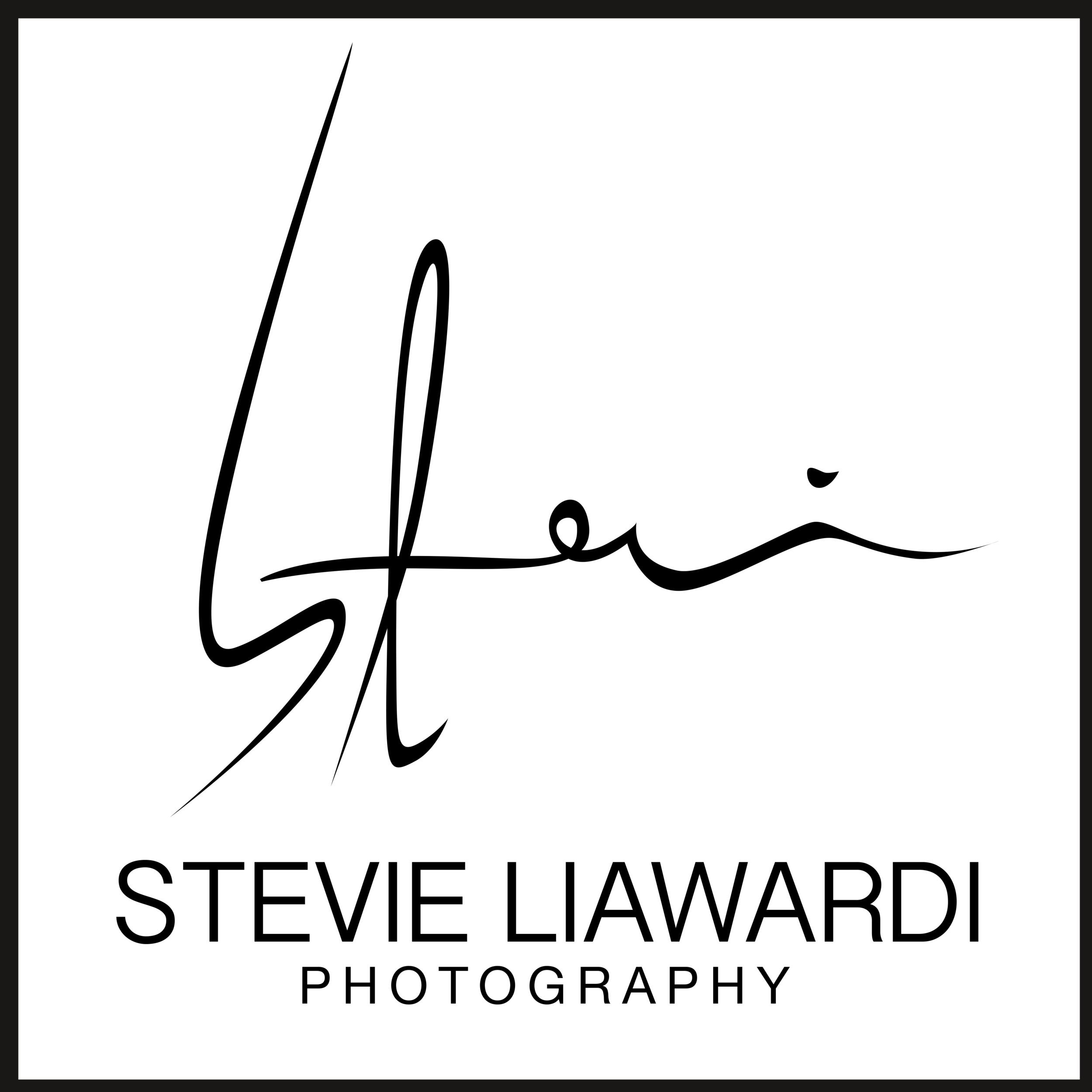 logo stevie liawardi black.png