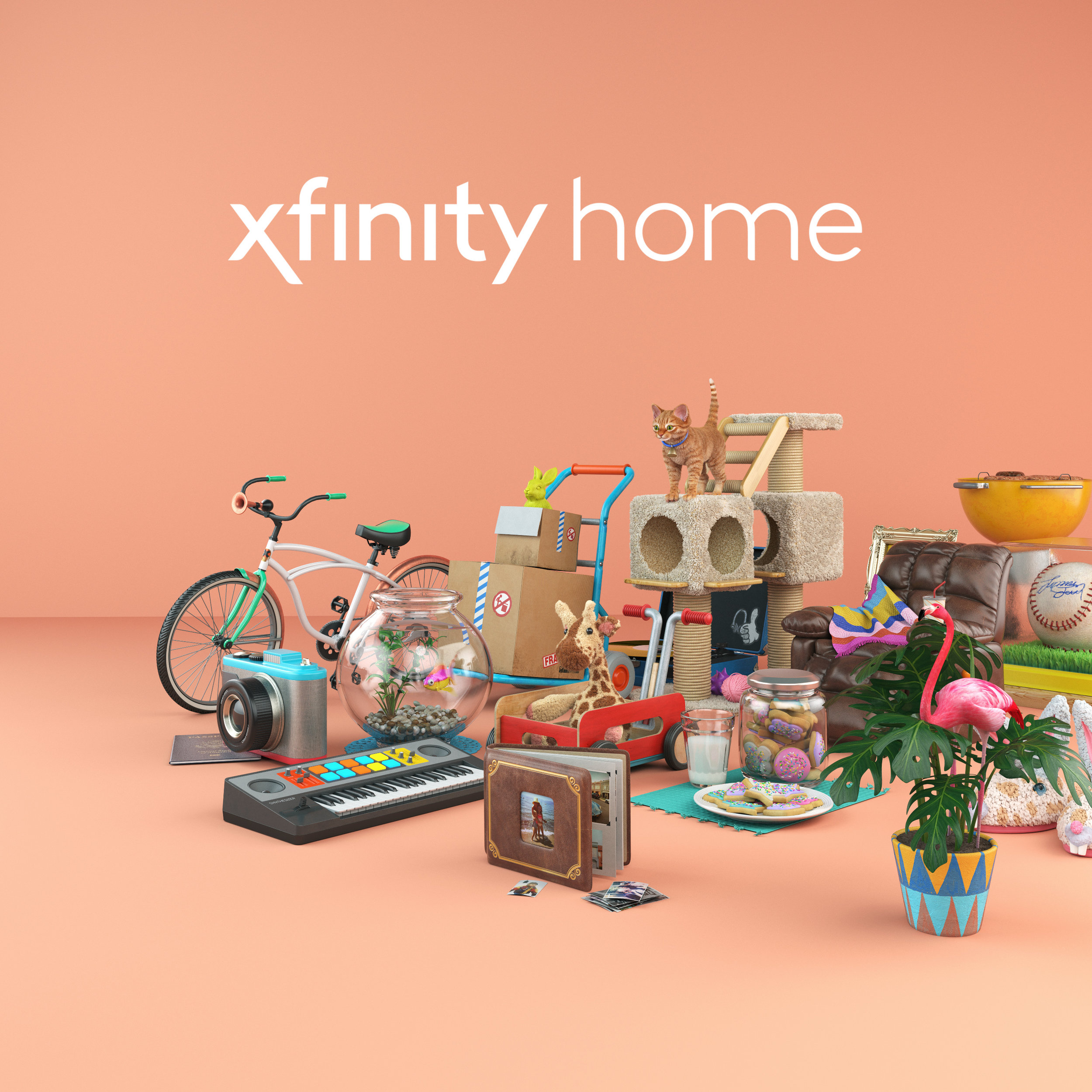 xfinity still lifes.jpg