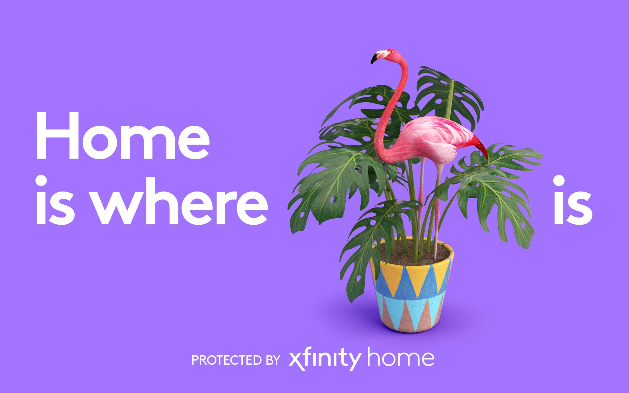 xfinity_flamingo.jpg