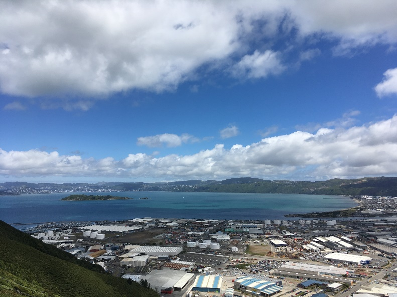 View from Wainuiomata Hill Road lookout, Loewr Hutt