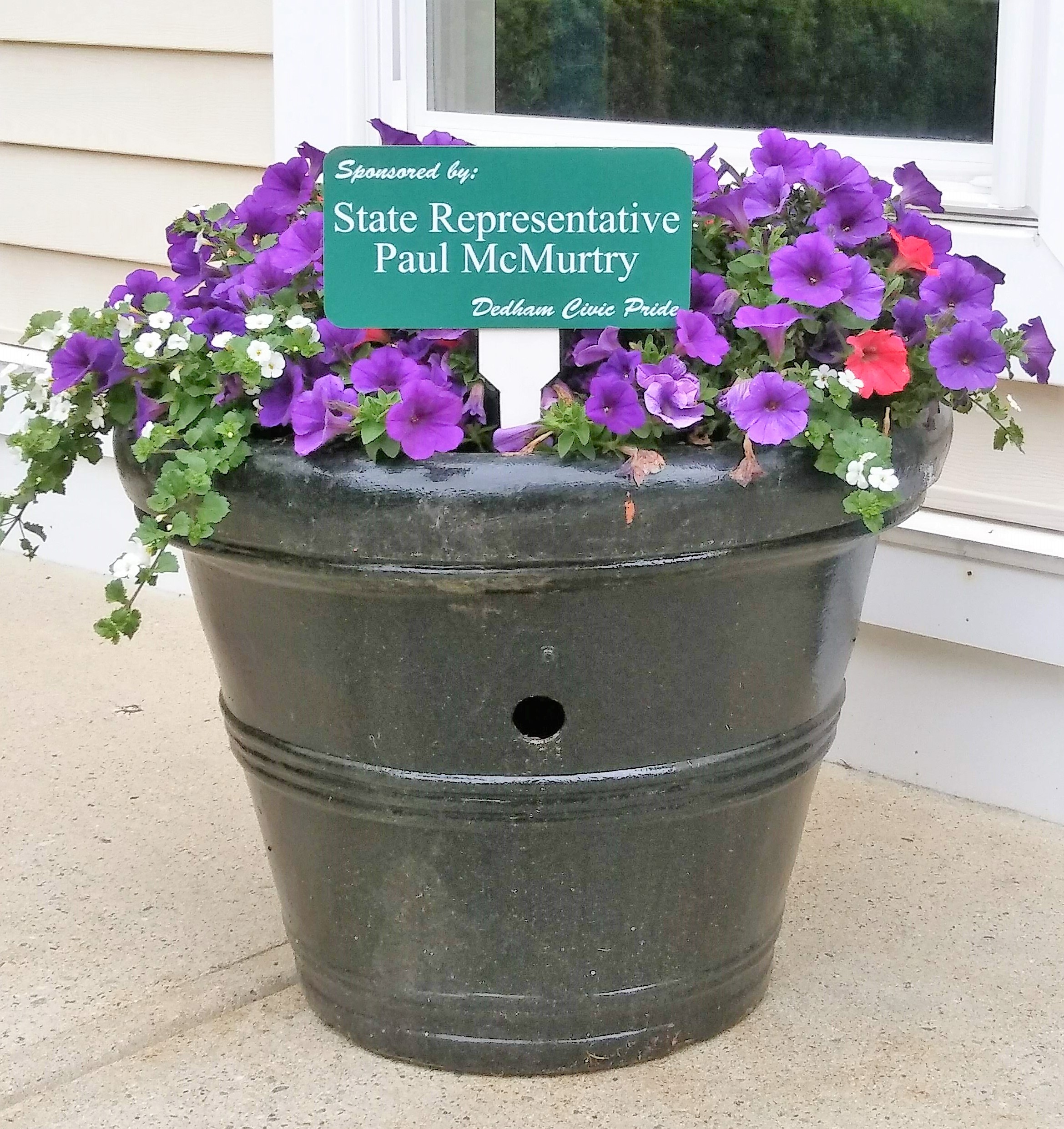 2018 State Rep. McMurtry Blooms Pot Spring.2.jpg