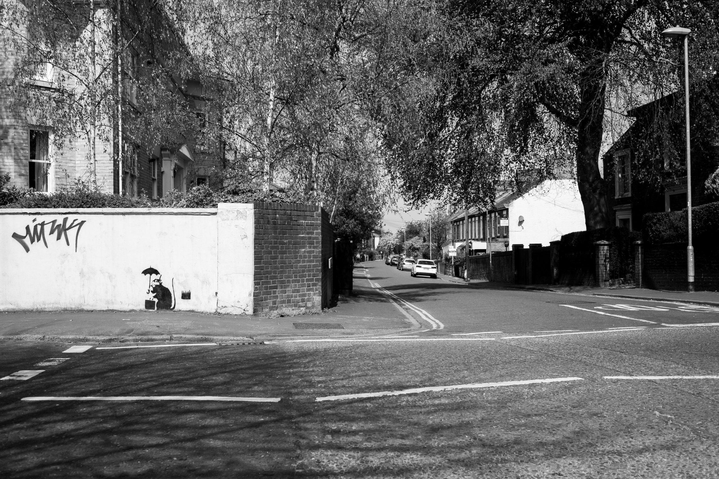 Earlham Road/Alexandra Road