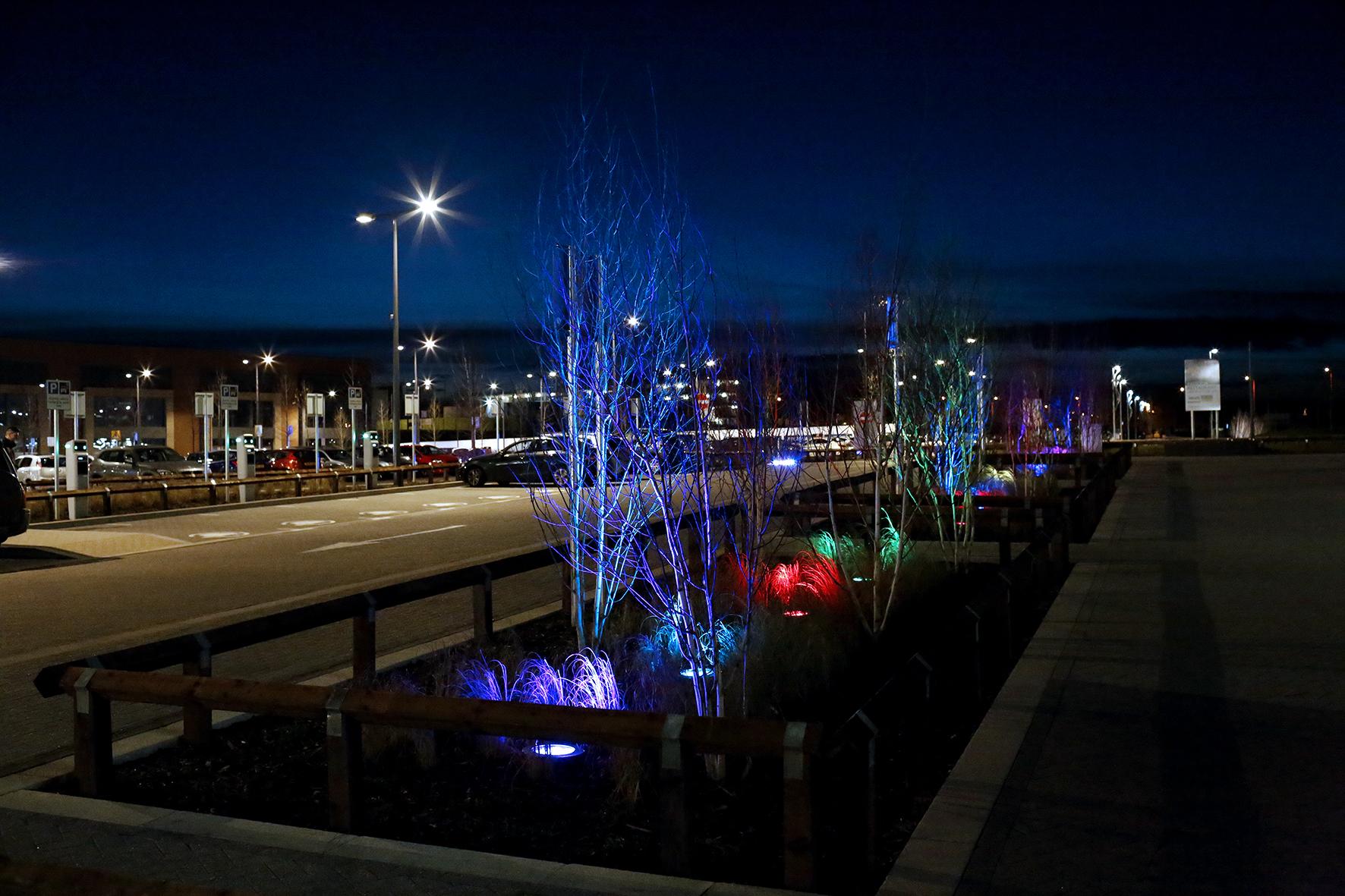 Lighting & Planting Scheme