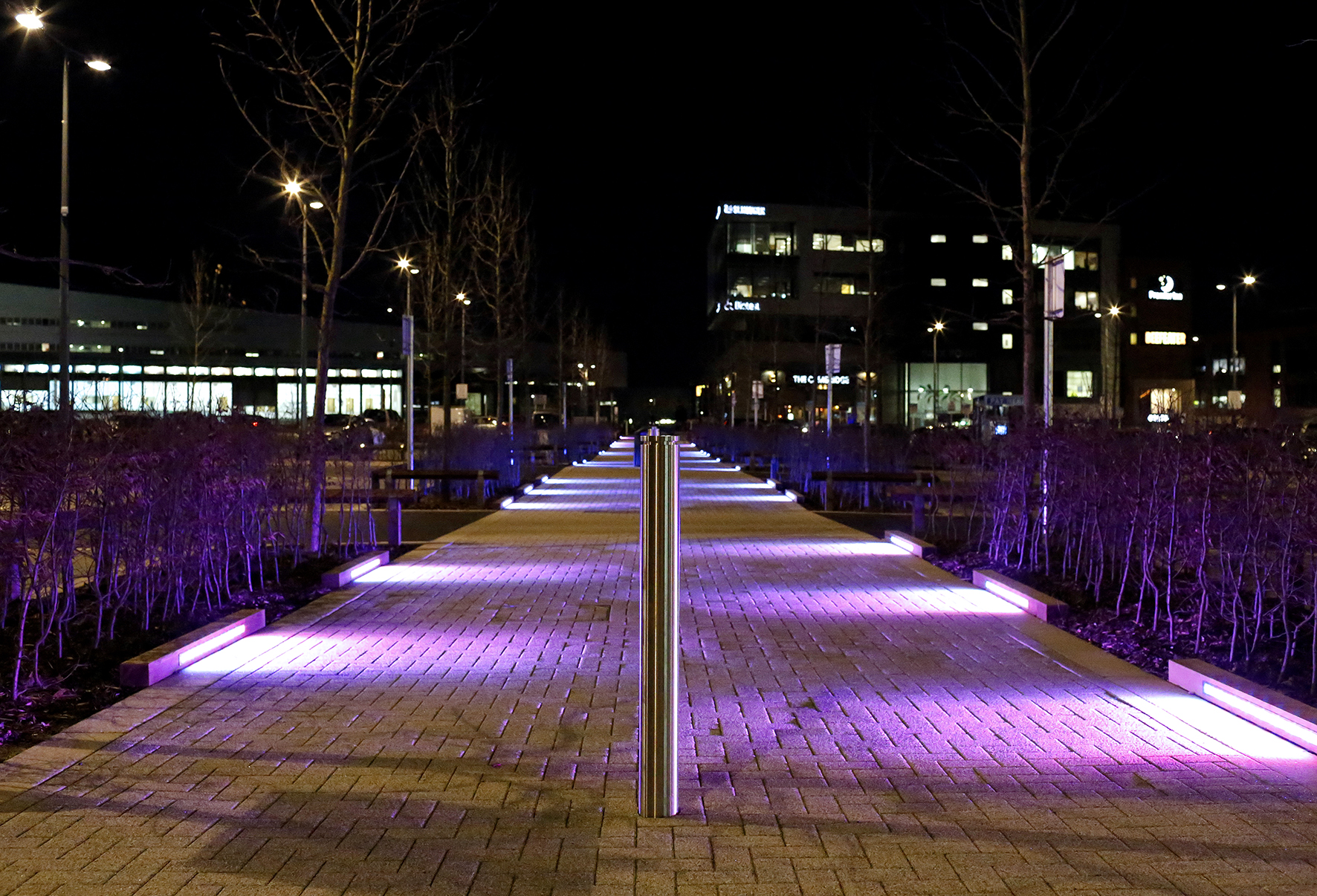 Lighting & Planting Scheme for Longbridge by Cathy Wade, photography by Stephen Burke